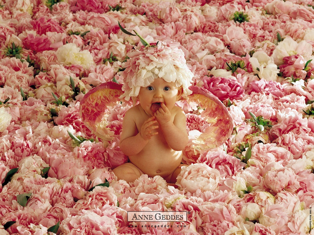 cute baby in flowers wallpapers in jpg format for free download