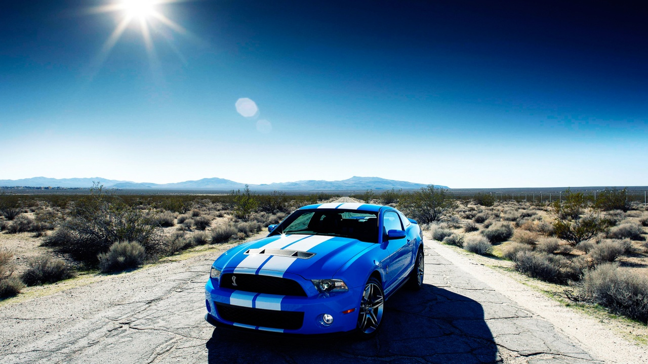 Ford Shelby GT500 Car Wallpapers