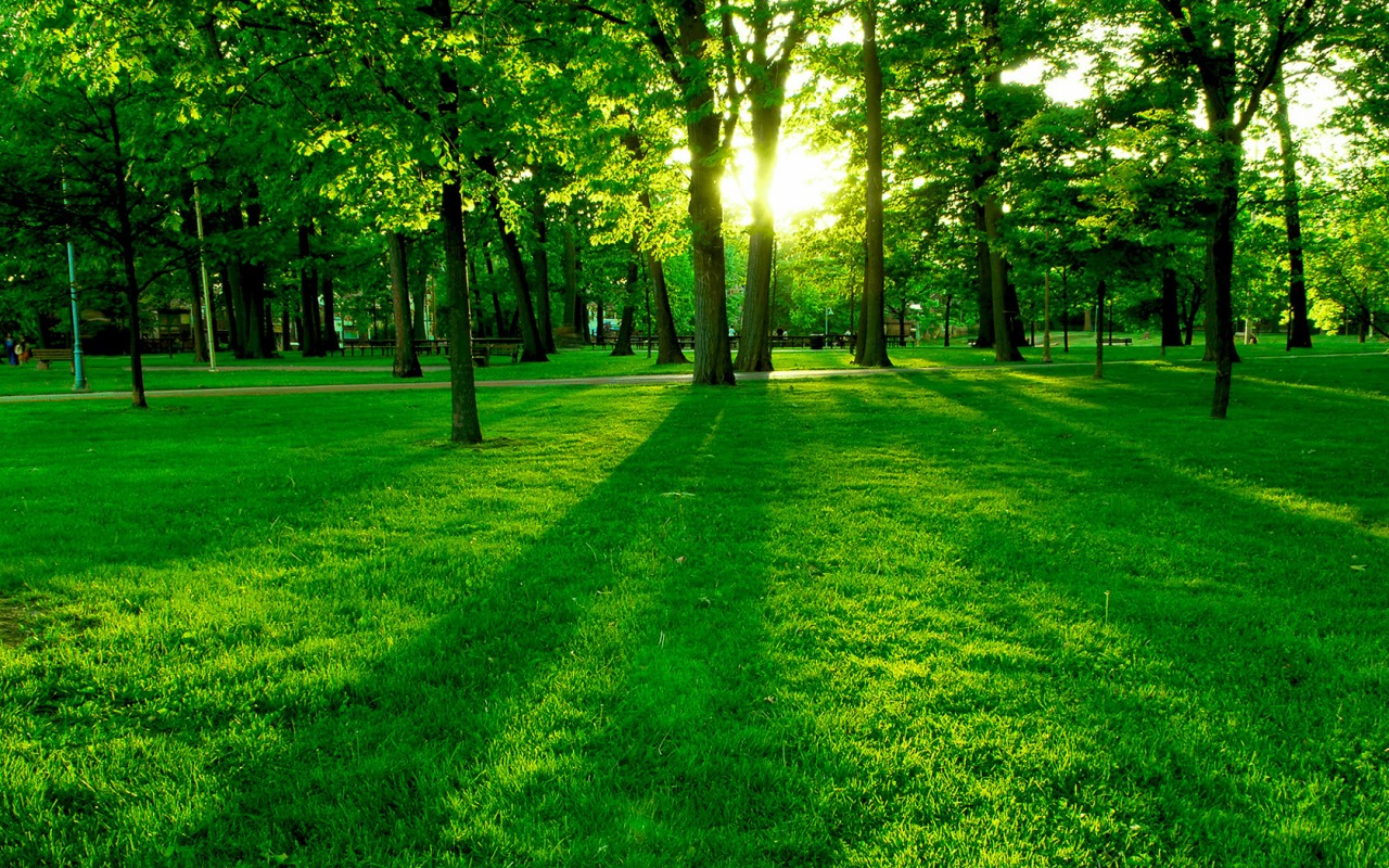 Green Park Wallpaper Landscape Nature Wallpapers In Jpg Format For