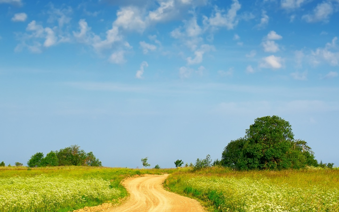 Country path Wallpaper Landscape Nature Wallpapers in jpg format
