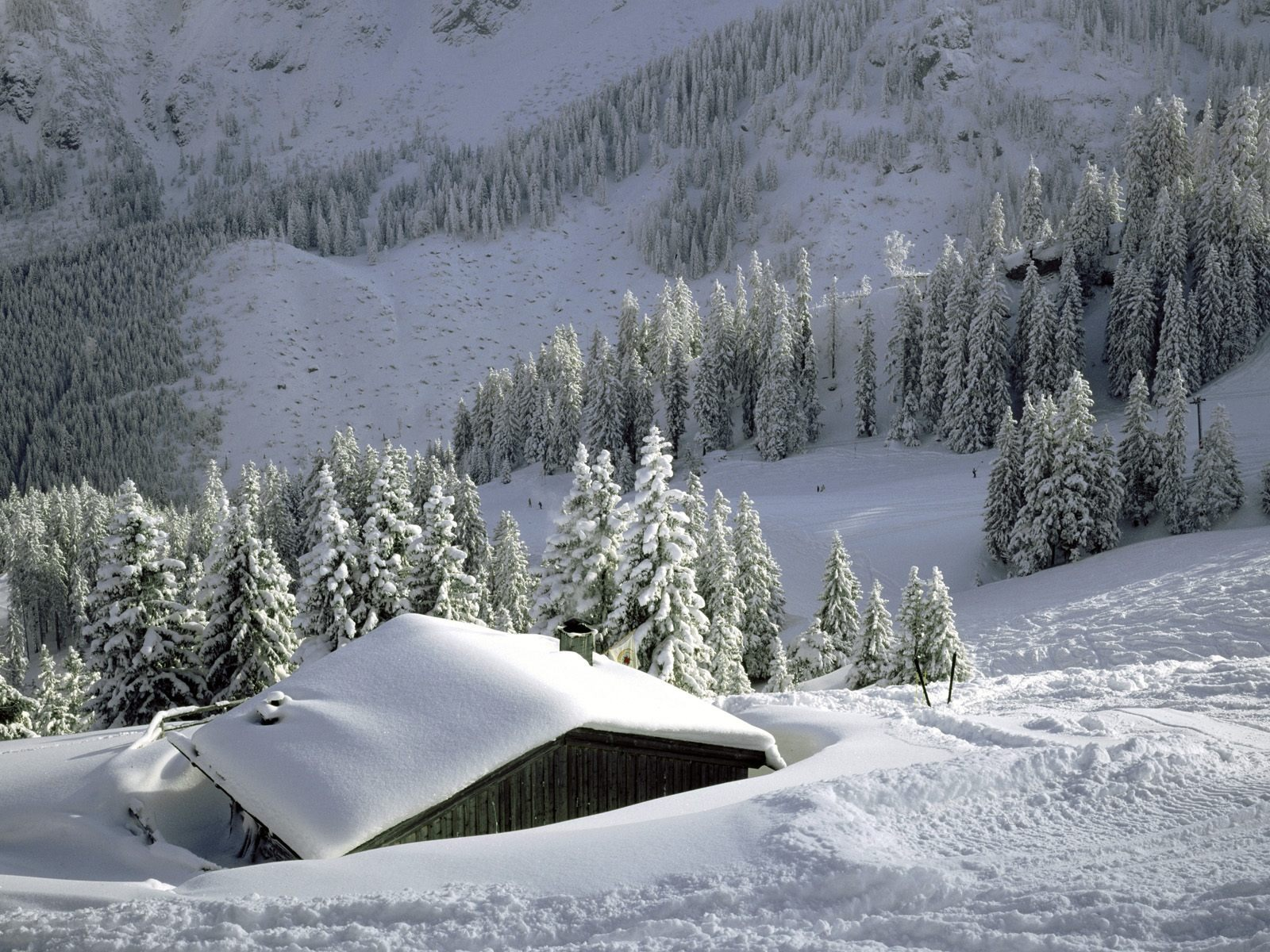 Carnic Alps Italy Wallpapers . Mb r Wallpapers HD Pinterest