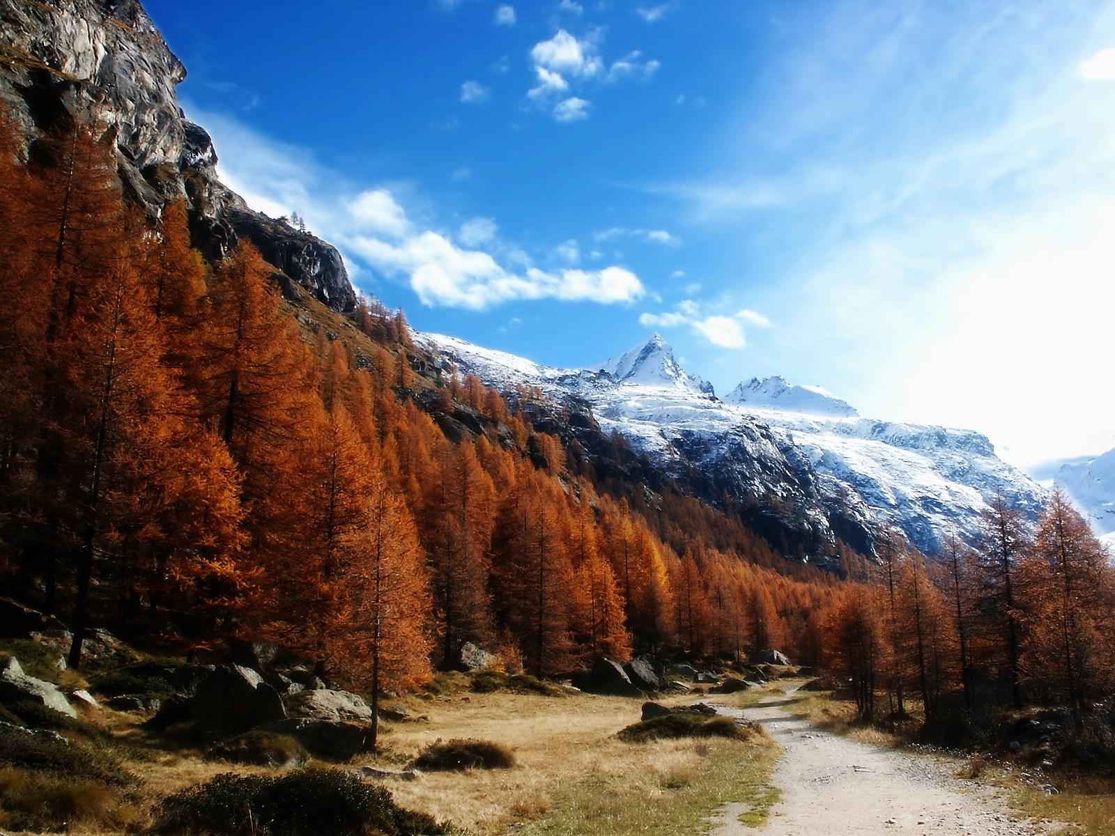 Gran Paradiso Wallpaper Landscape Nature Wallpapers in jpg format