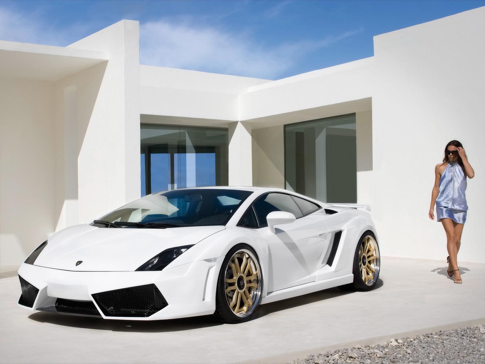 IMSA Lamborghini Gallardo Wallpaper Cars Wallpapers