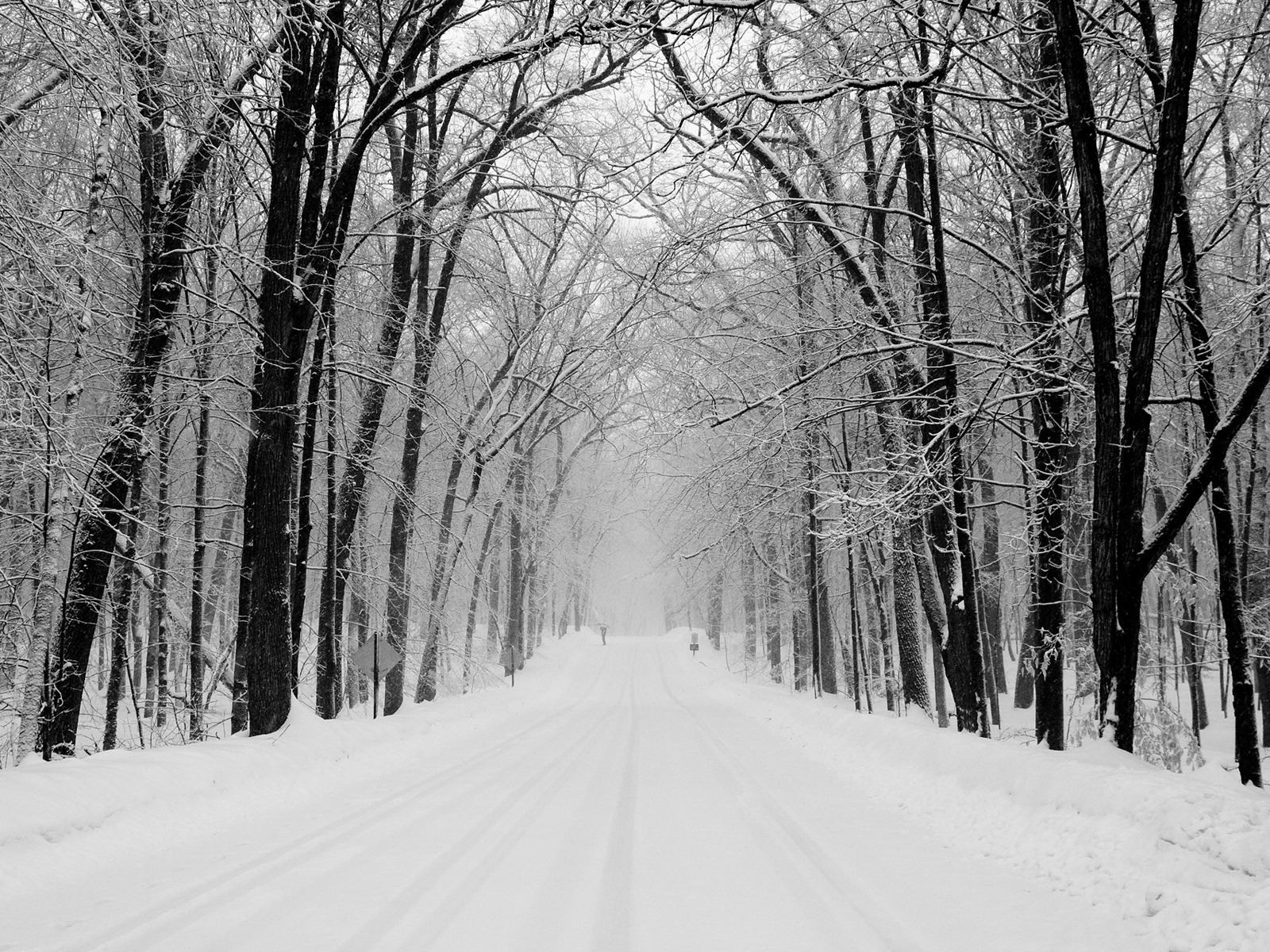 Snowy Road Wallpaper Winter Nature Wallpapers in jpg format for