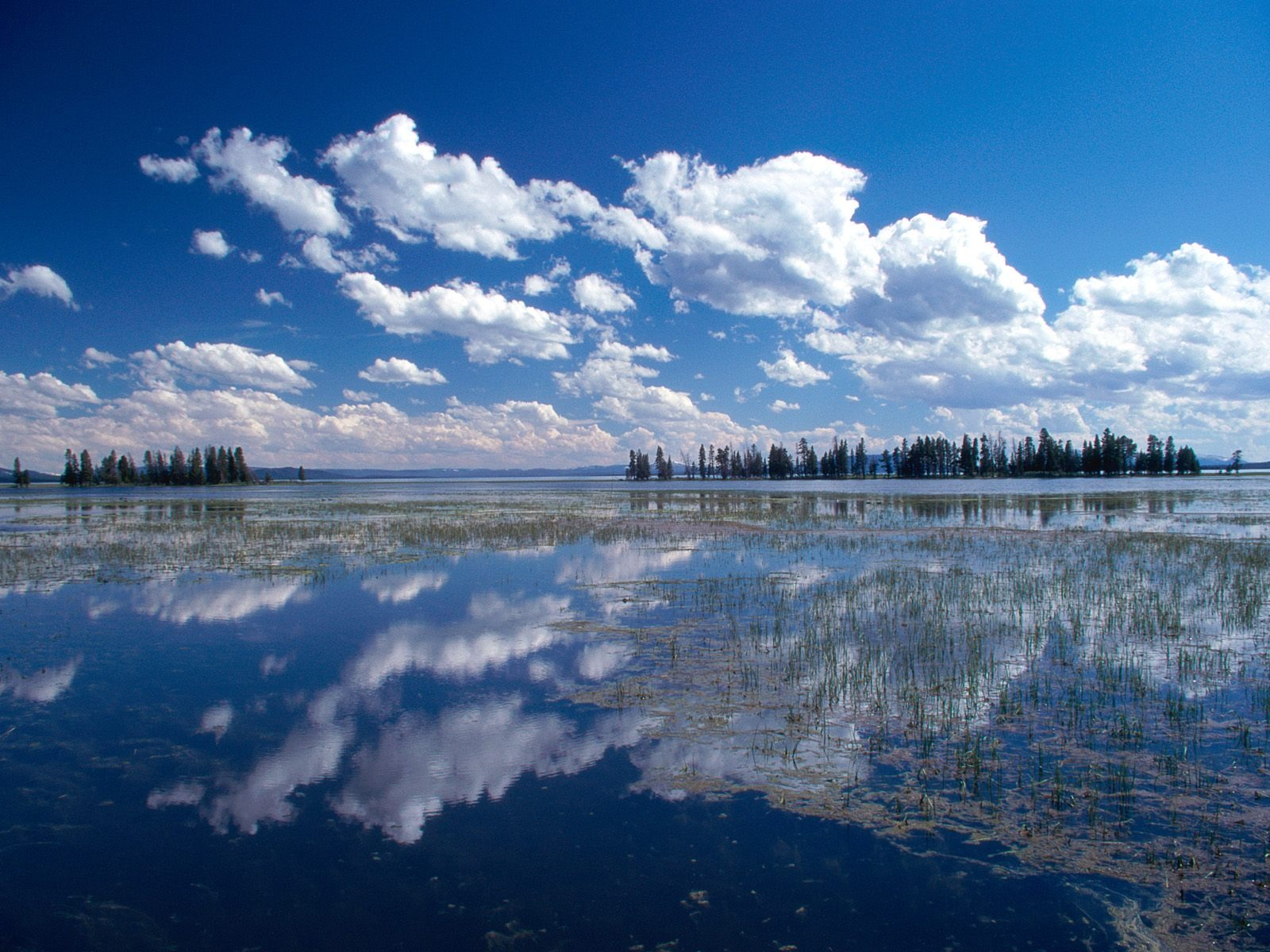 Wallpaper download in nature - Yellowstone Lake Wallpaper Landscape Nature