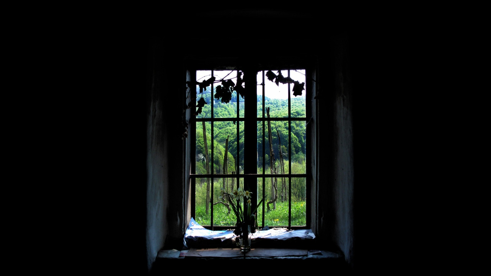Old Window Old Window Wallpaper Other Nature Wallpapers In Jpg Format For
