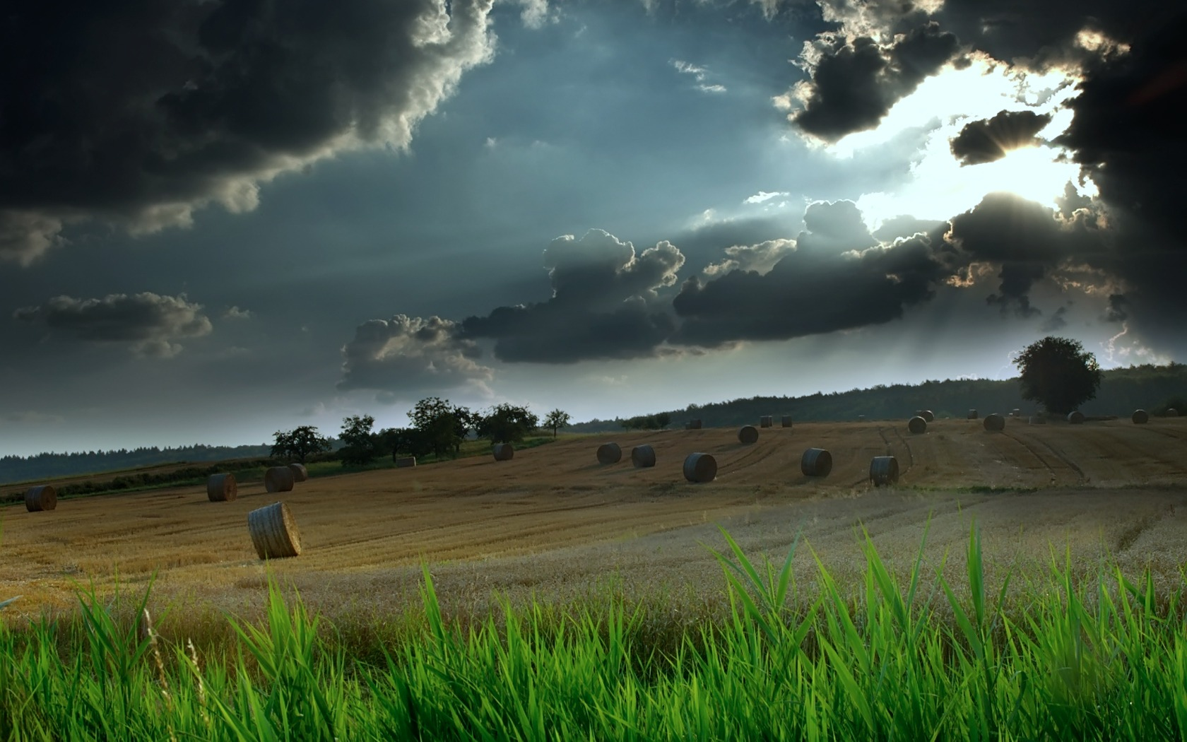 hayfield wallpaper landscape nature wallpapers in jpg format for