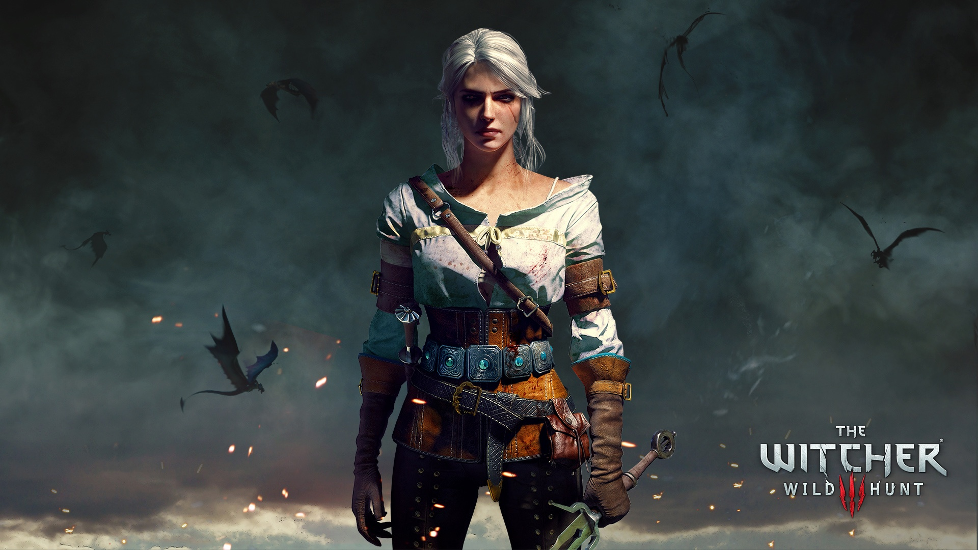 Ciri The Witcher 3 Wild Hunt Wallpapers in jpg format for