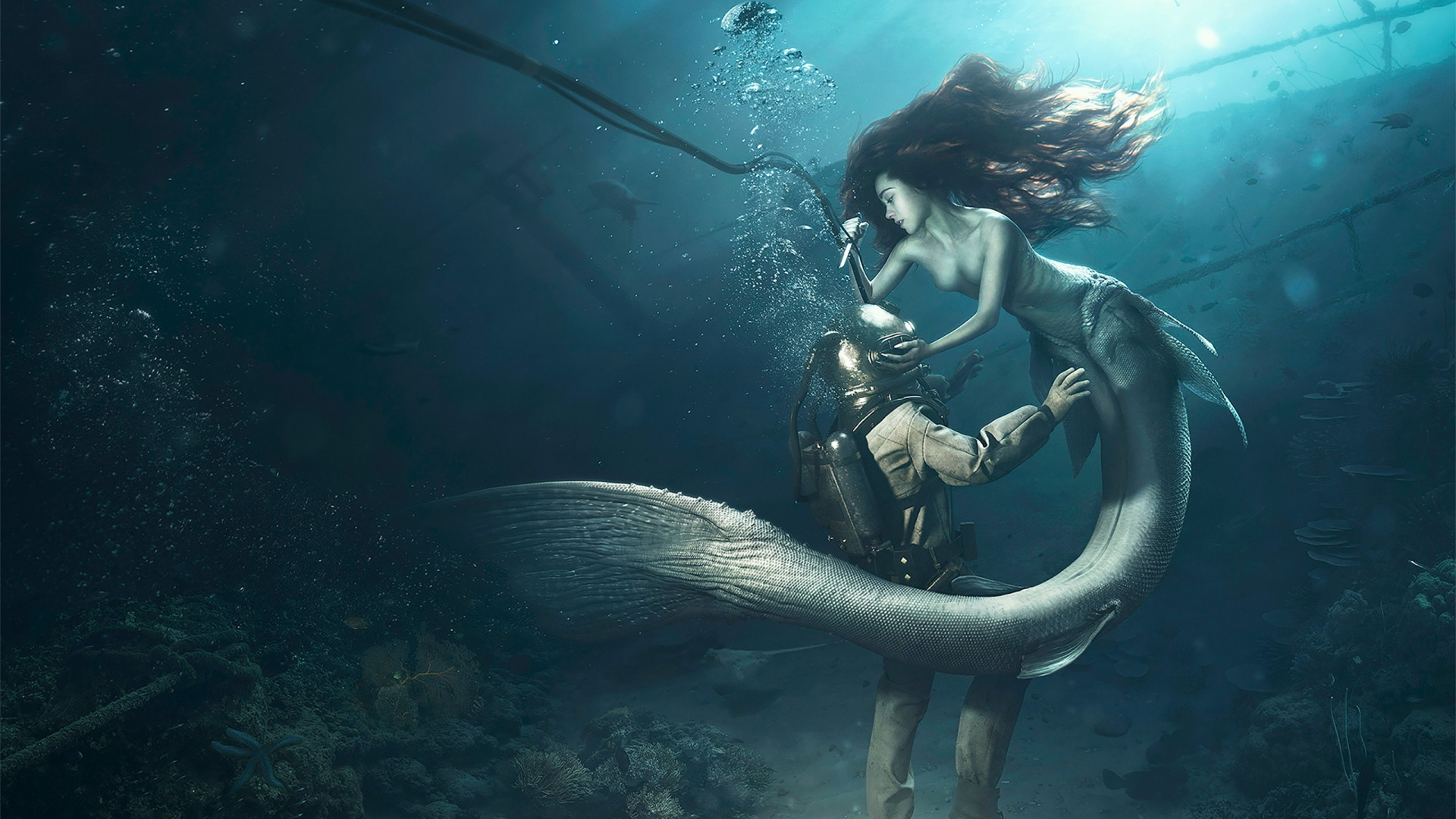 diver and the mermaid wallpapers in jpg format for free download