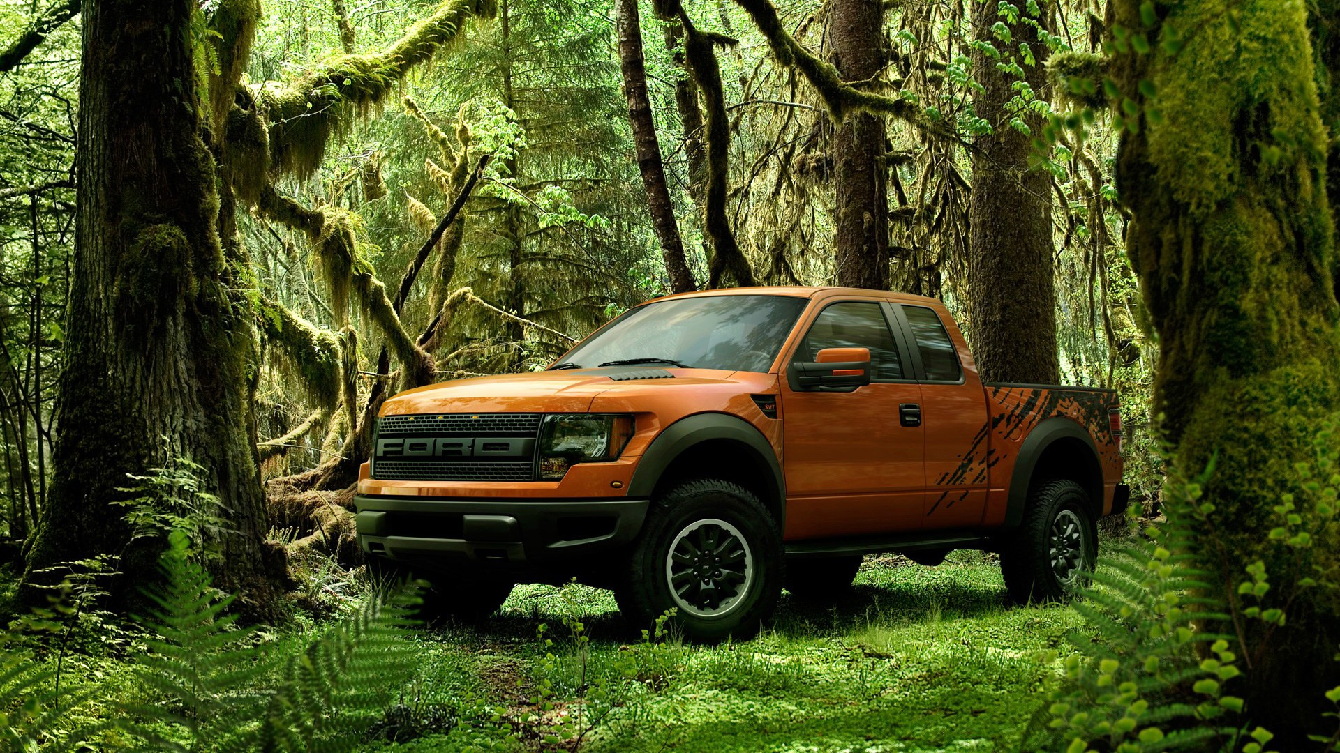 Ford F 150 Svt Raptor Wallpaper Ford Cars Wallpapers In Jpg Format