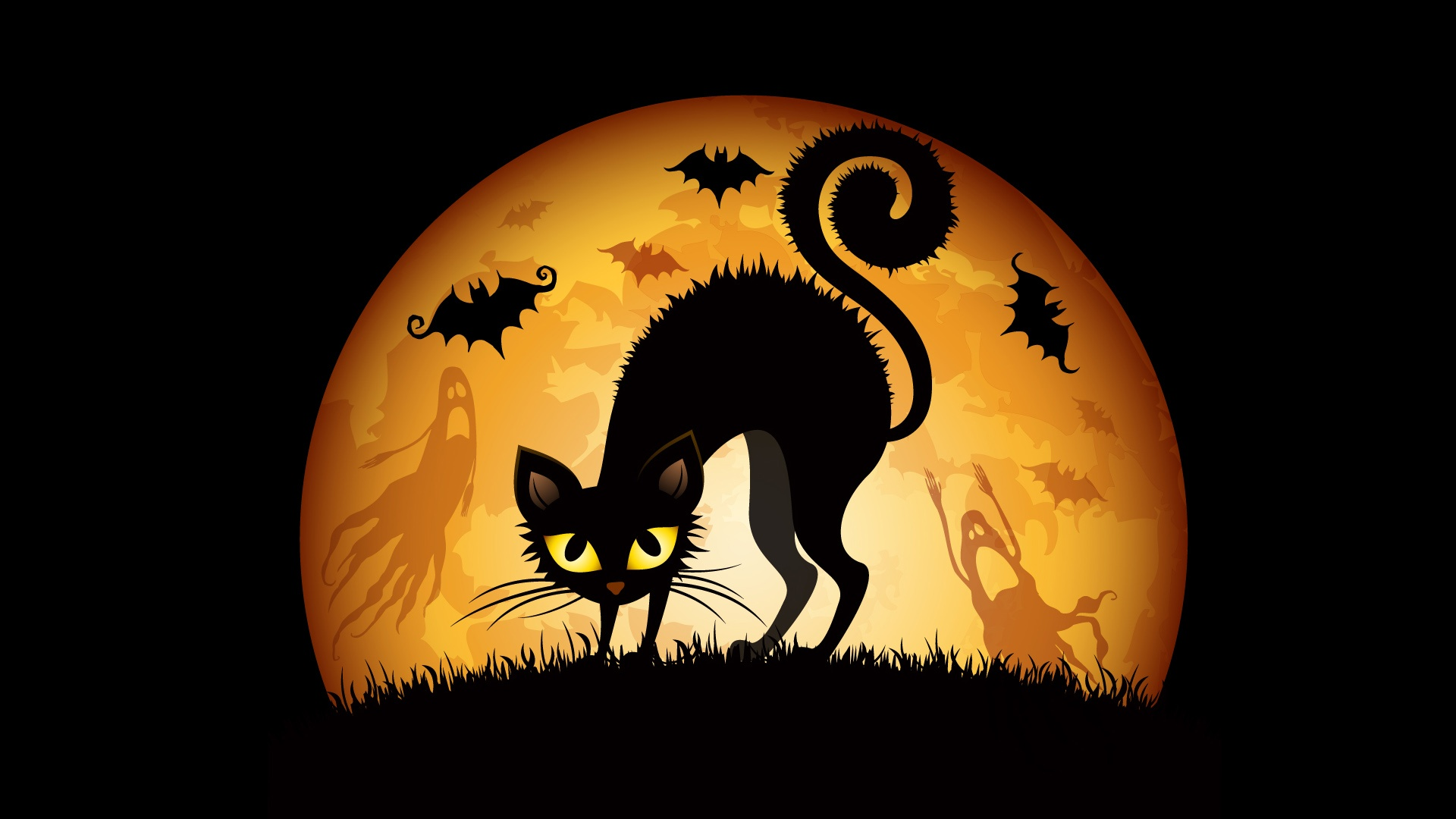 Halloween Cats Bats Wallpapers In Jpg Format For Free Download