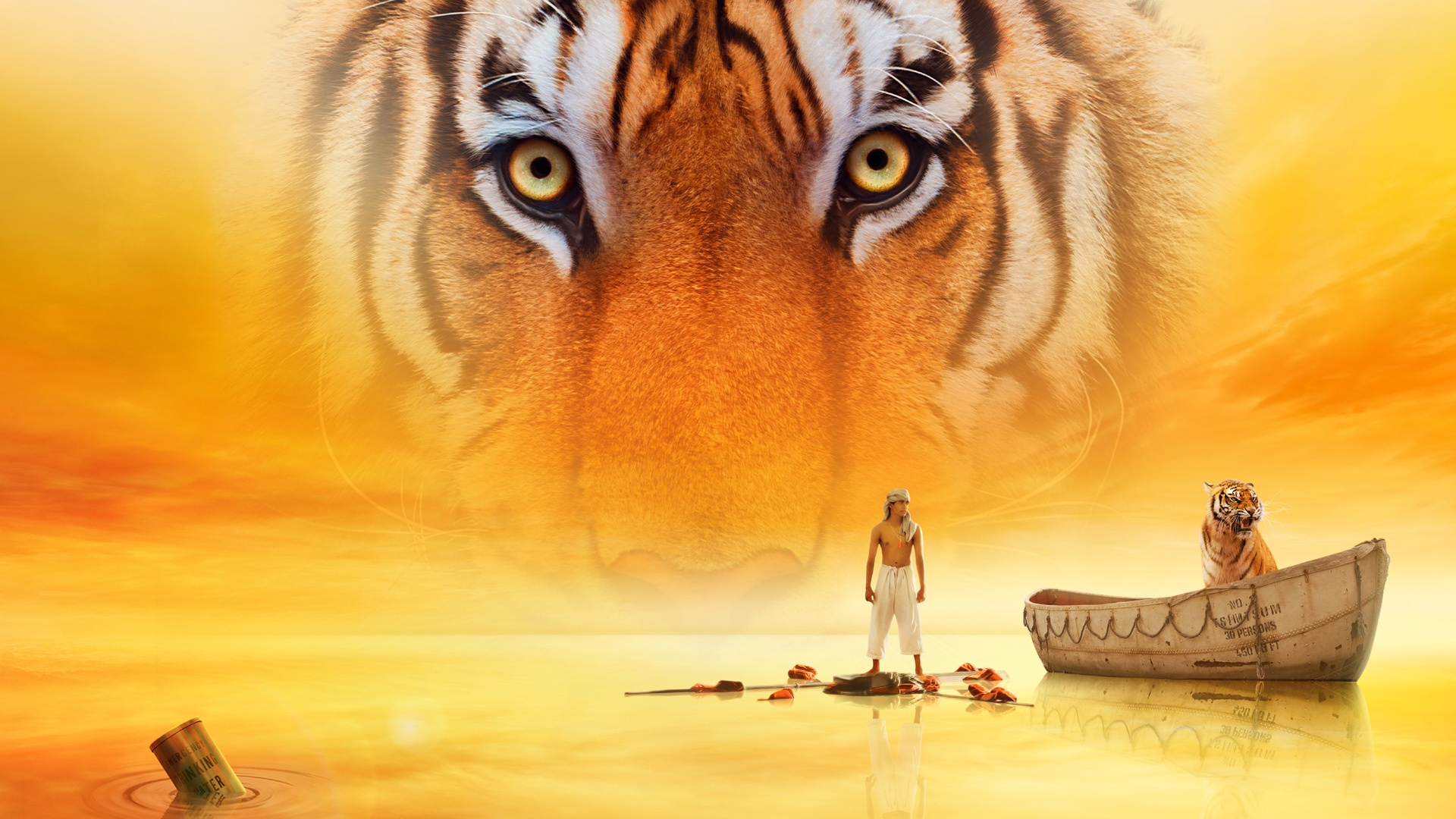life of pi movie wallpapers in jpg format for free download