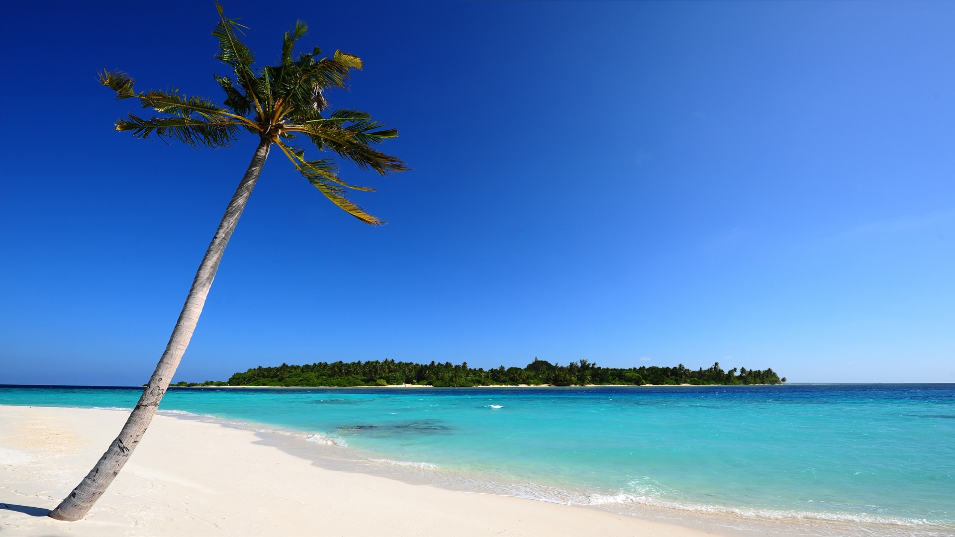 maldivian beach wallpapers in jpg format for free download