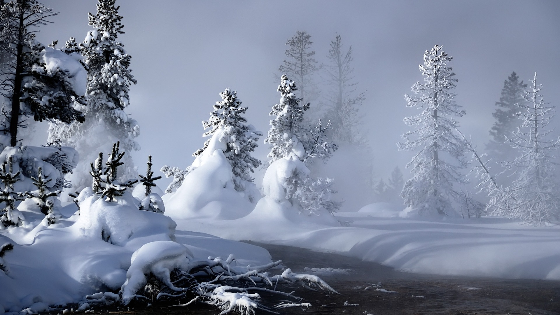Mystic Winter Wallpaper Nature Wallpapers