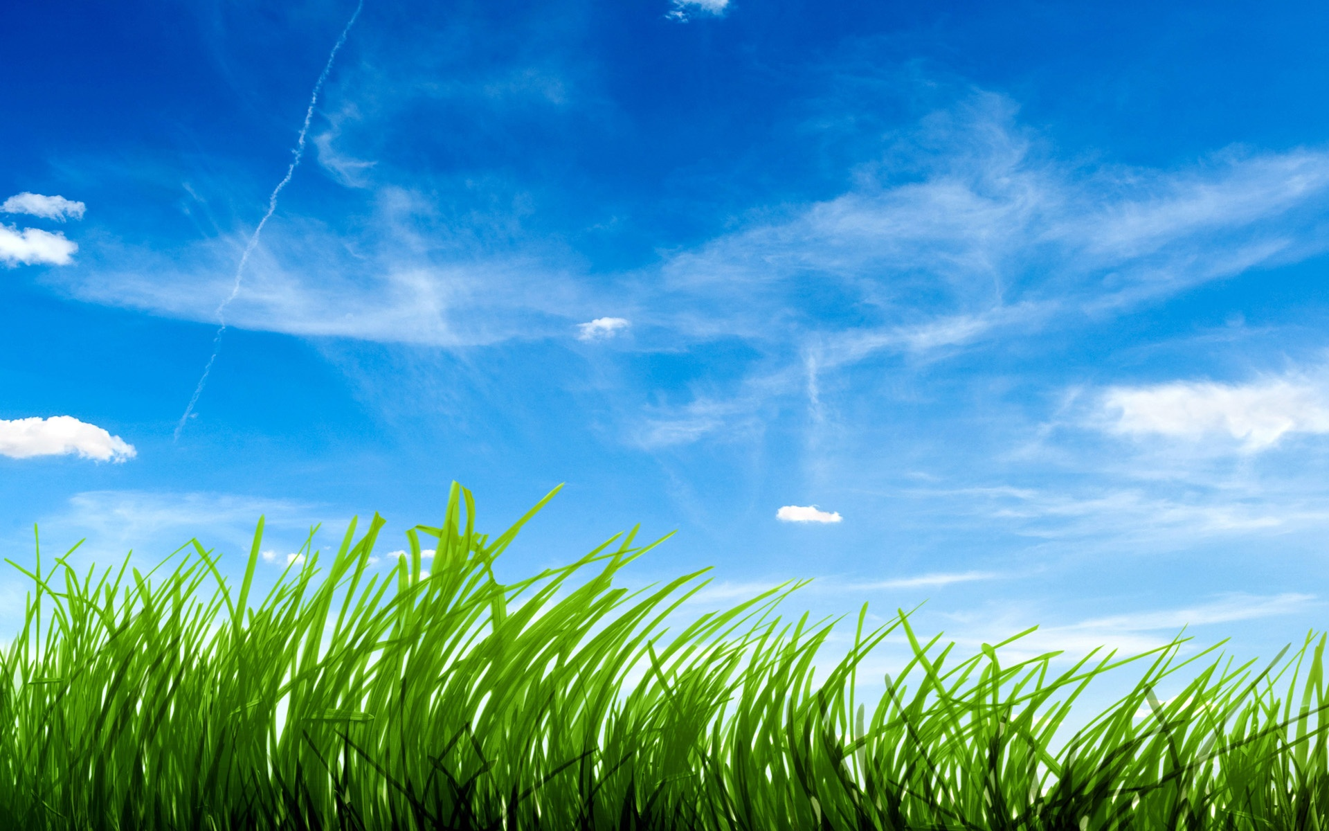 blue sky green grass wallpapers in jpg format for free download