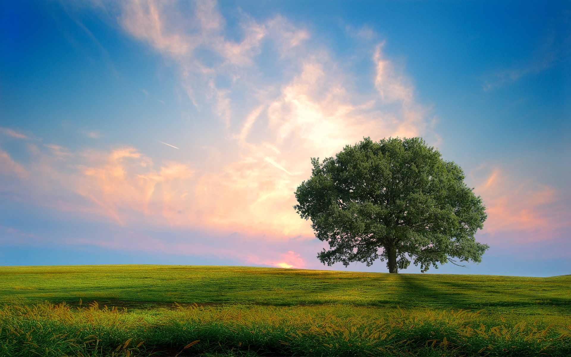 Nature wallpaper nature scenes wallpapers for free download about ...