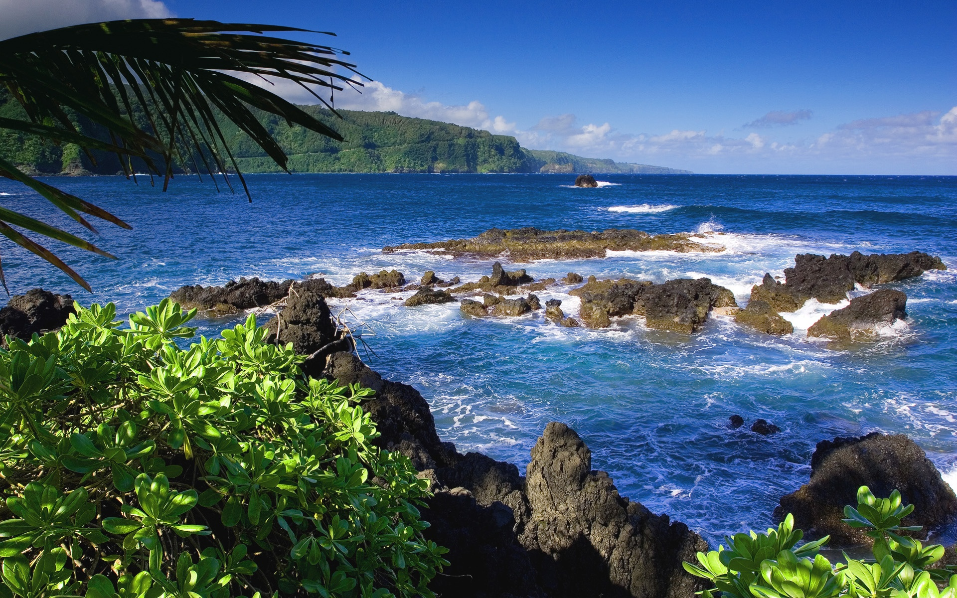 Hawaii Wallpapers in jpg format for free download