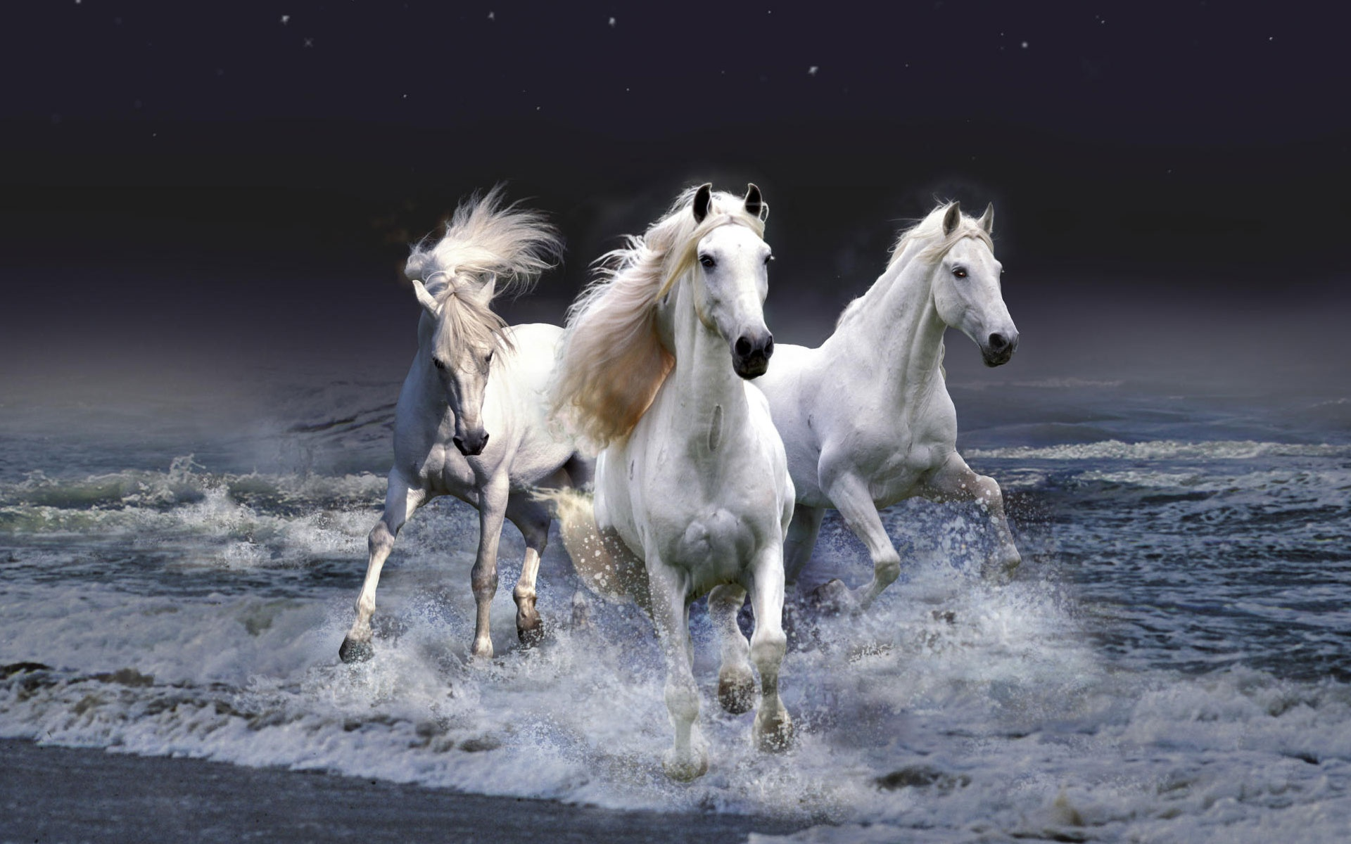 Horse wallpaper wallpapers for free download about 3020 wallpapers mystic horses voltagebd Choice Image