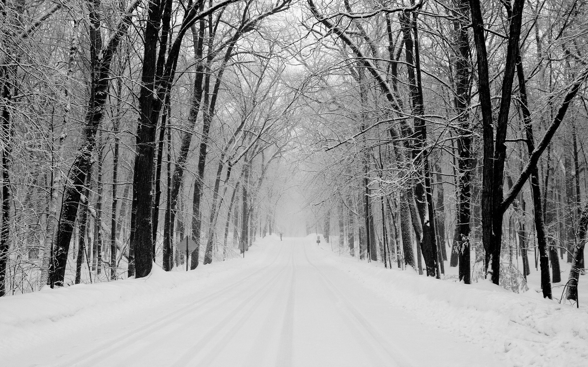 Snowy Road Wallpaper Winter Nature Wallpapers