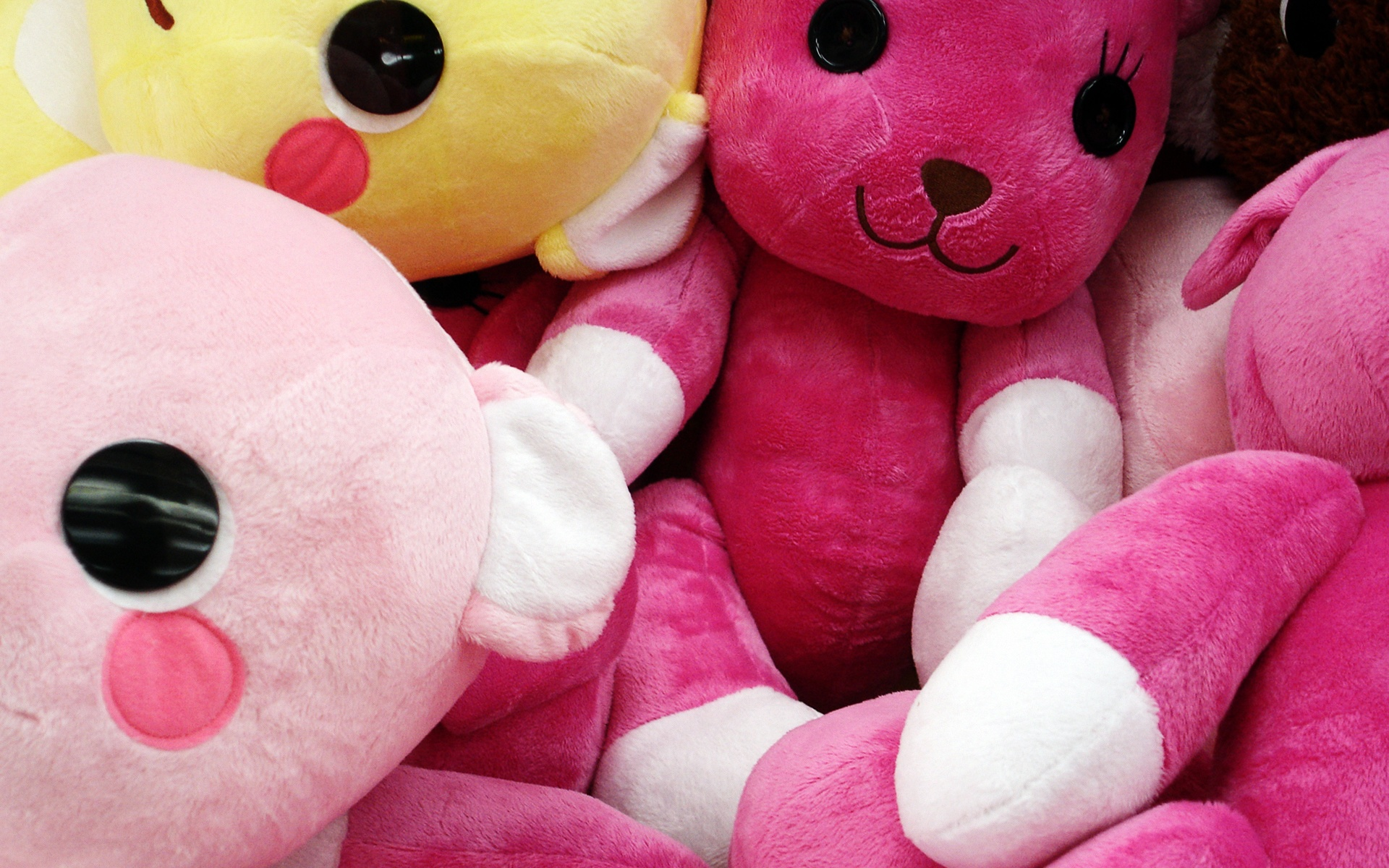 Teddy Bunnies Wallpapers In Jpg Format For Free Download