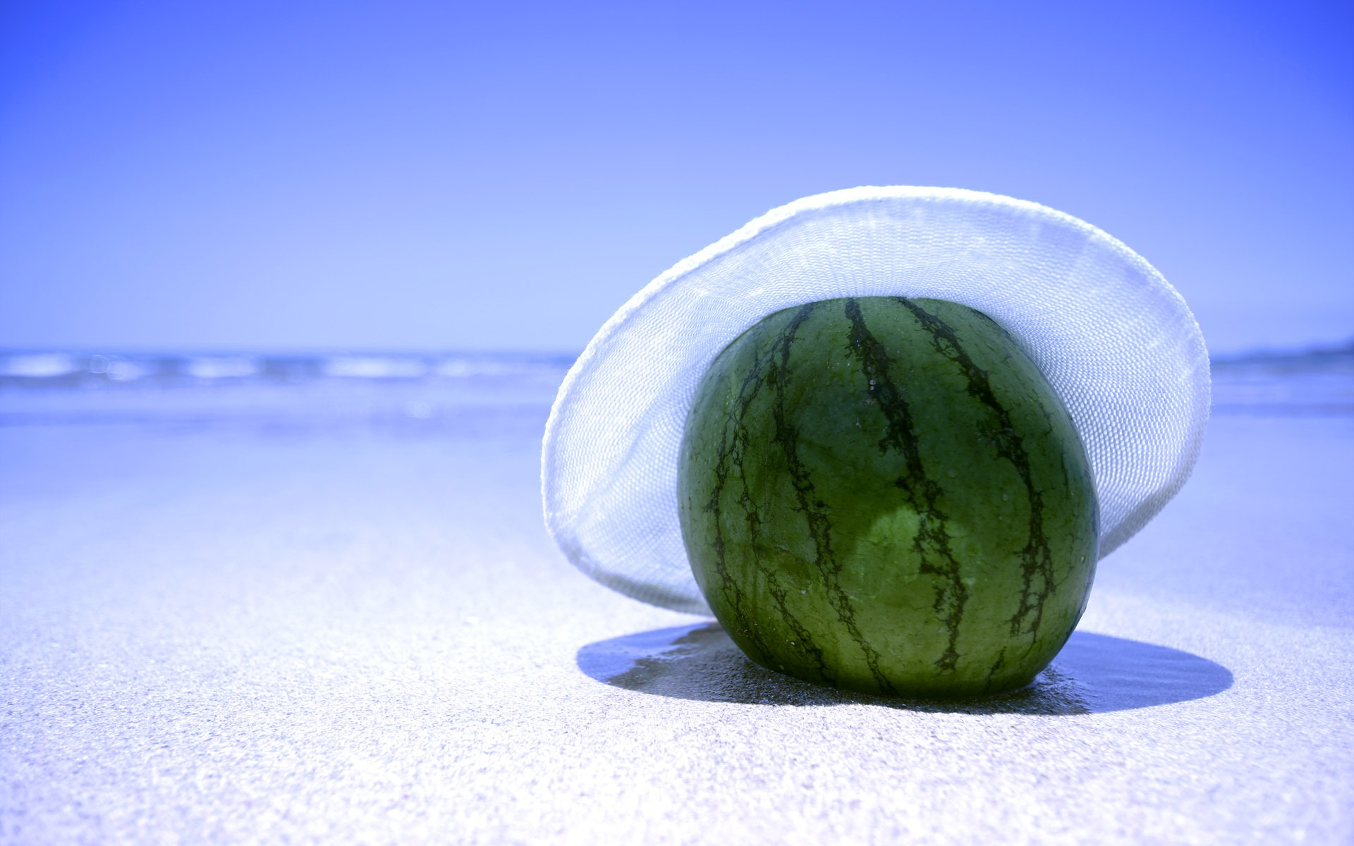 Watermelon Wallpaper Plants Nature Wallpapers in jpg format for ...