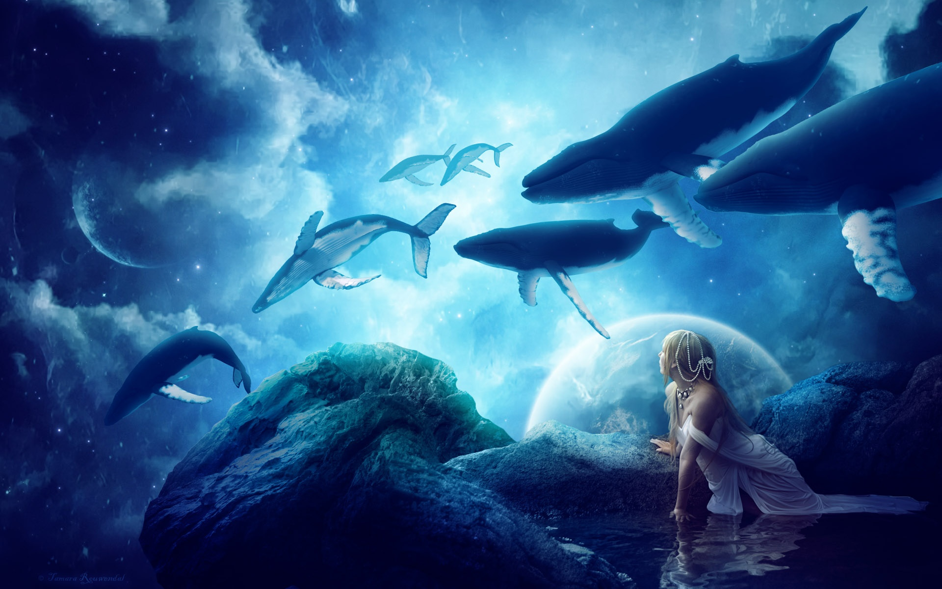 Whales Dream Wallpapers In Jpg Format For Free Download