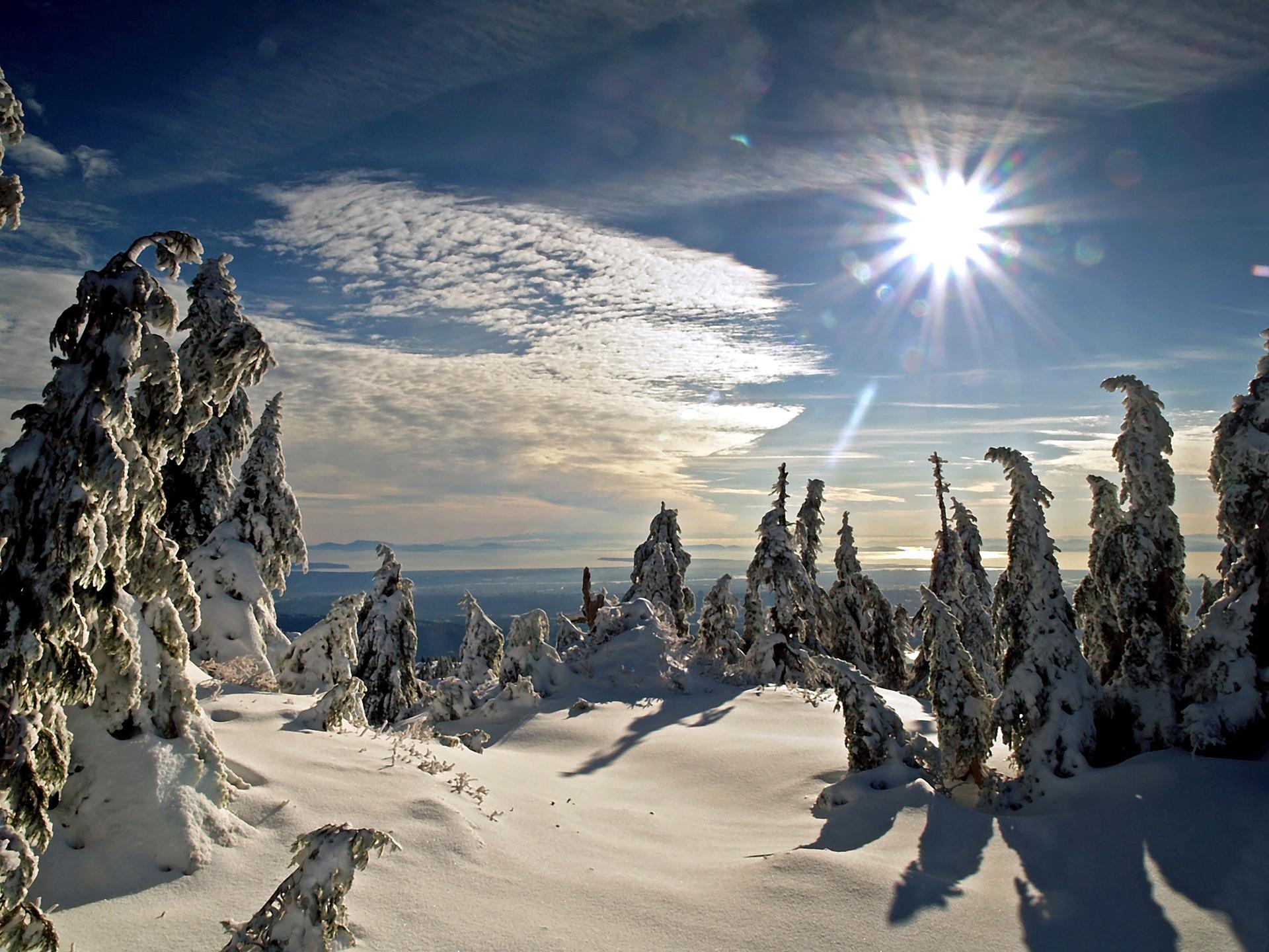 Winter Sun Wallpaper Winter Nature Wallpapers in jpg format for free