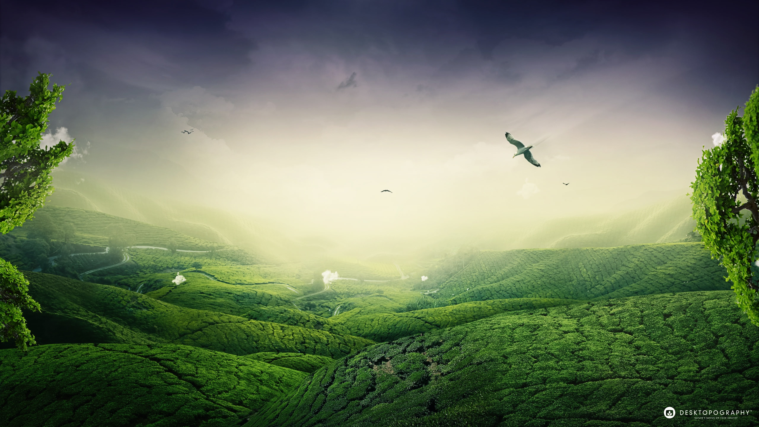 green landscape wallpapers in jpg format for free download
