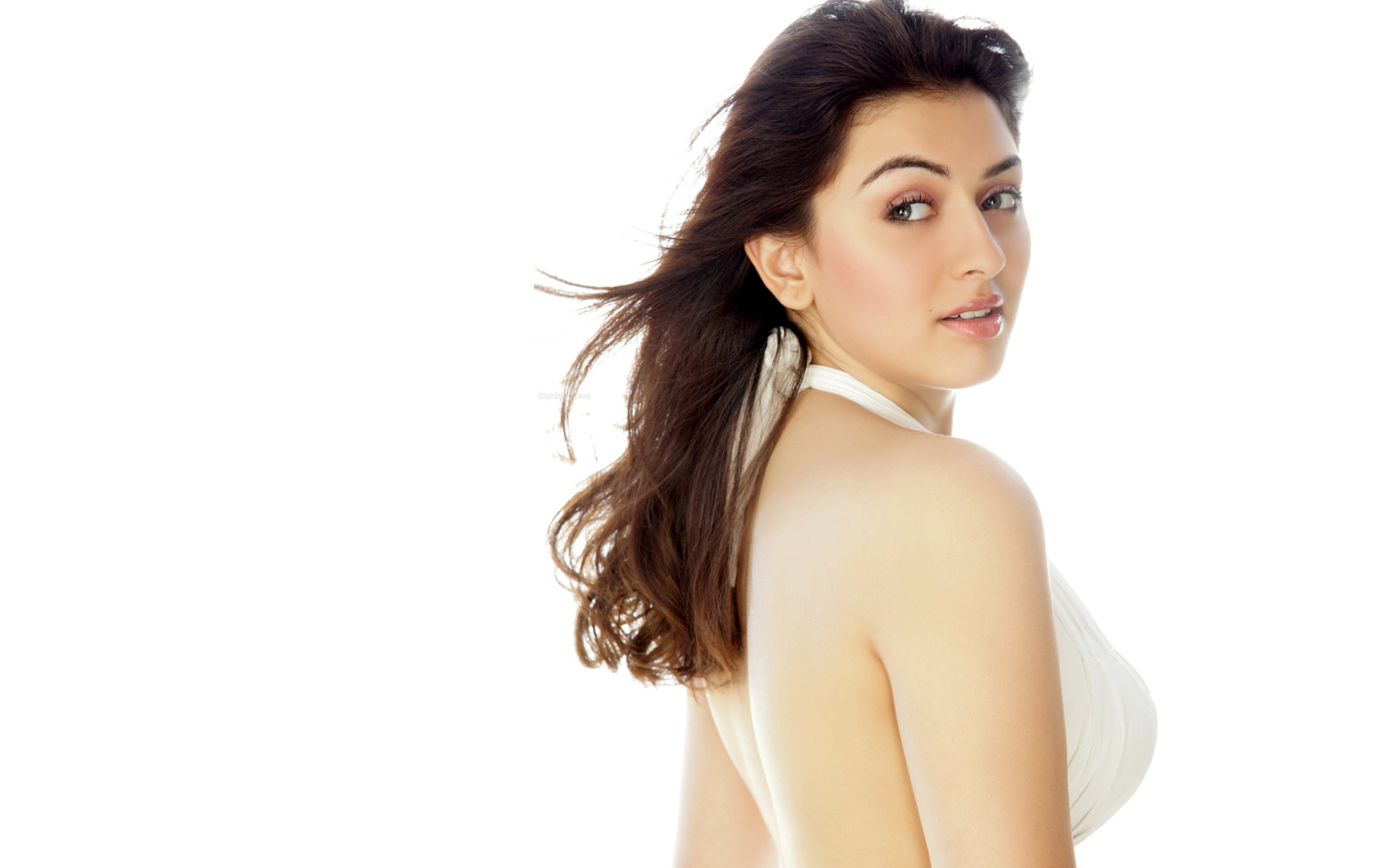 hansika wallpapers photos and desktop backgrounds up to K