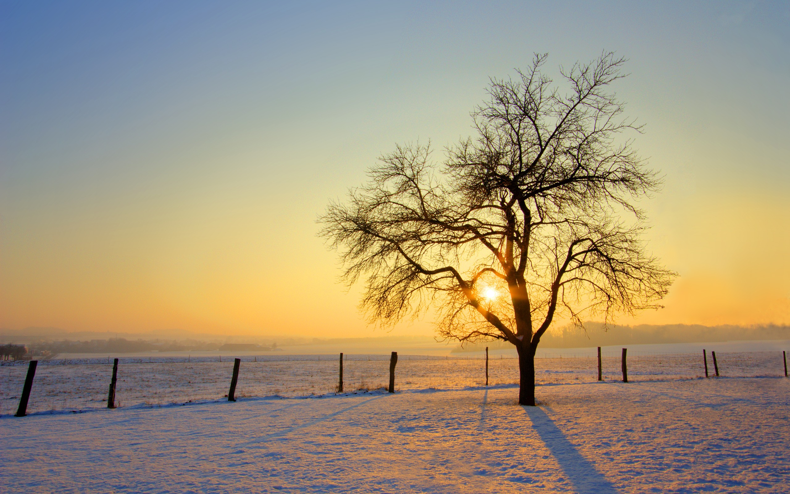 cold morning wallpaper winter nature wallpapers in jpg format for