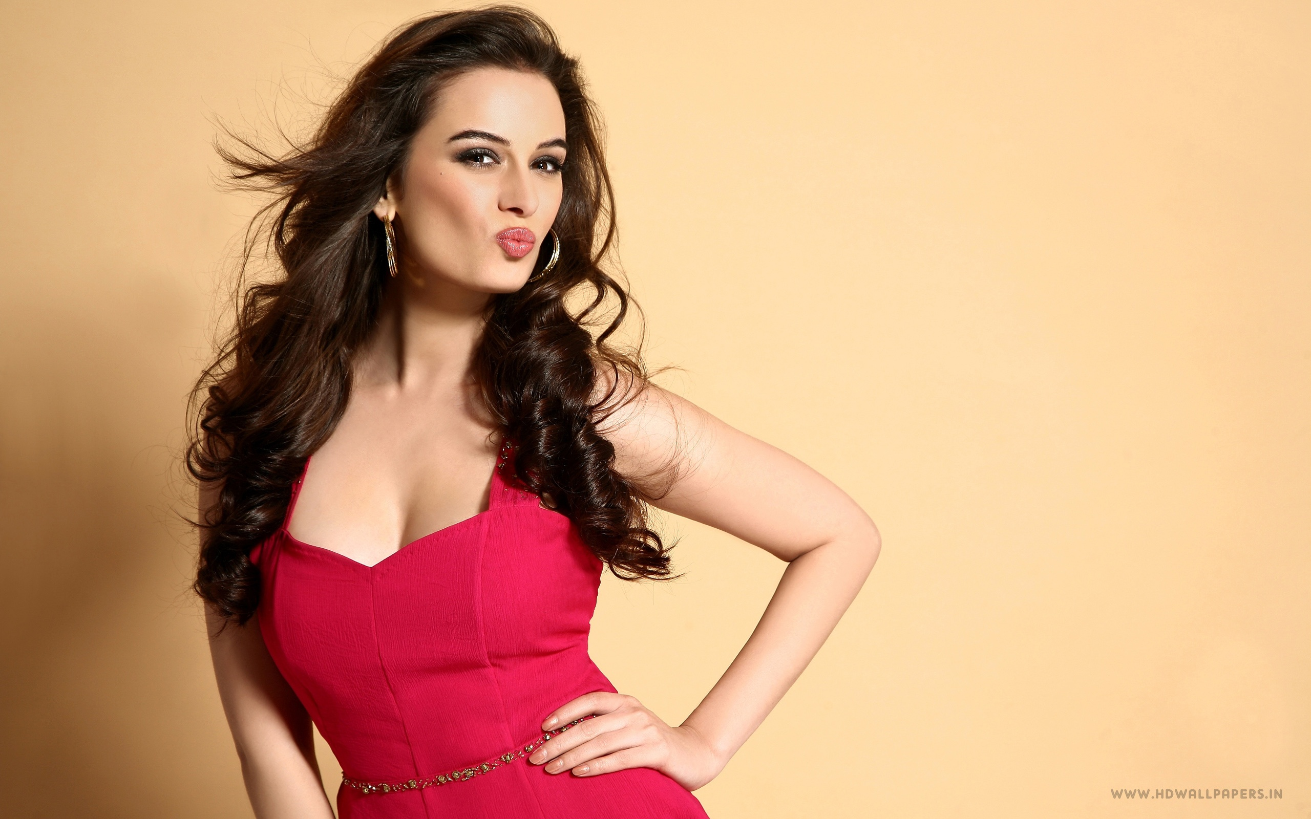 evelyn sharma bollywood actress wallpapers in jpg format for free