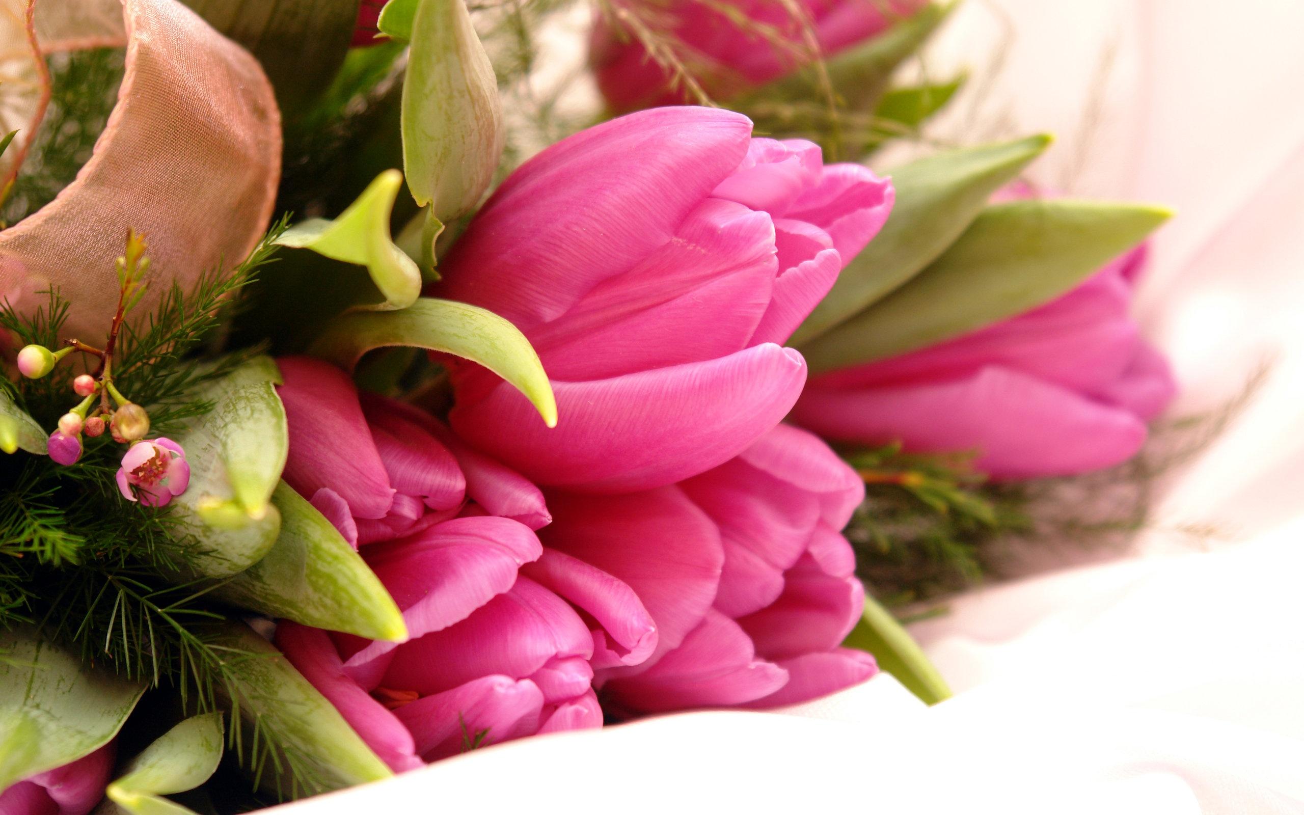 Fancy pink flowers wallpapers in jpg format for free download fancy pink flowers wallpapers mightylinksfo Images