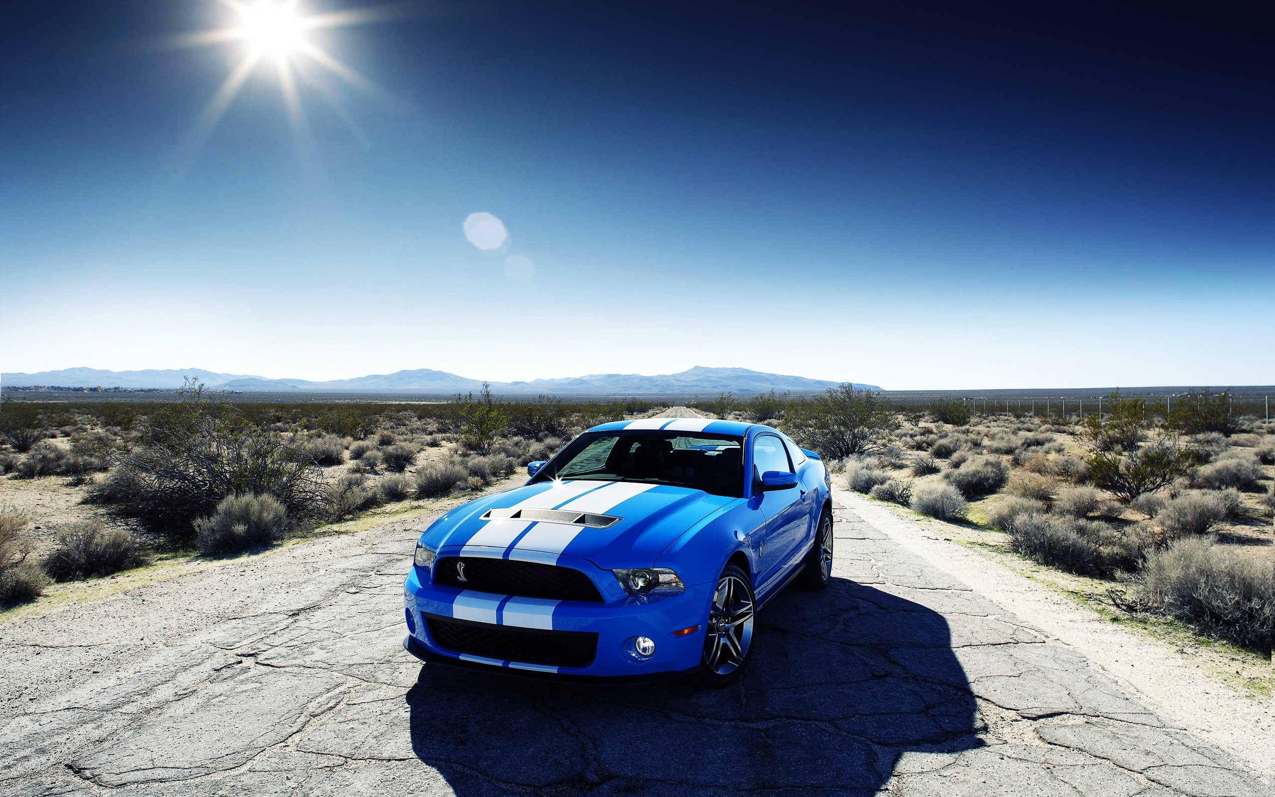 Ford Shelby Gt500 Car Wallpapers In Jpg Format For Free Download