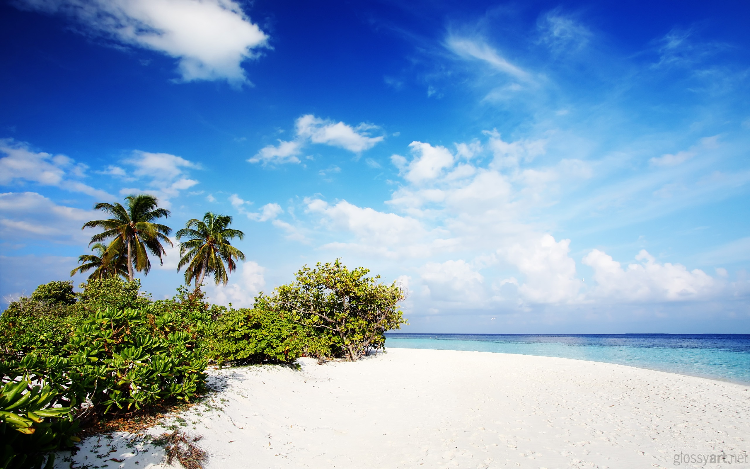 Beach Picture Beach Sun Nature Wallpapers In Jpg Format For Free Download