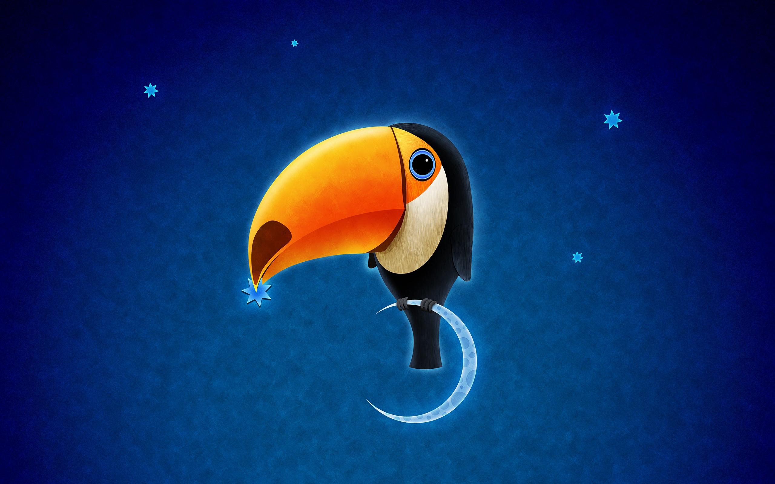 Must see Wallpaper Love Bird - toucan_bird_3795  Photograph_539779.jpg