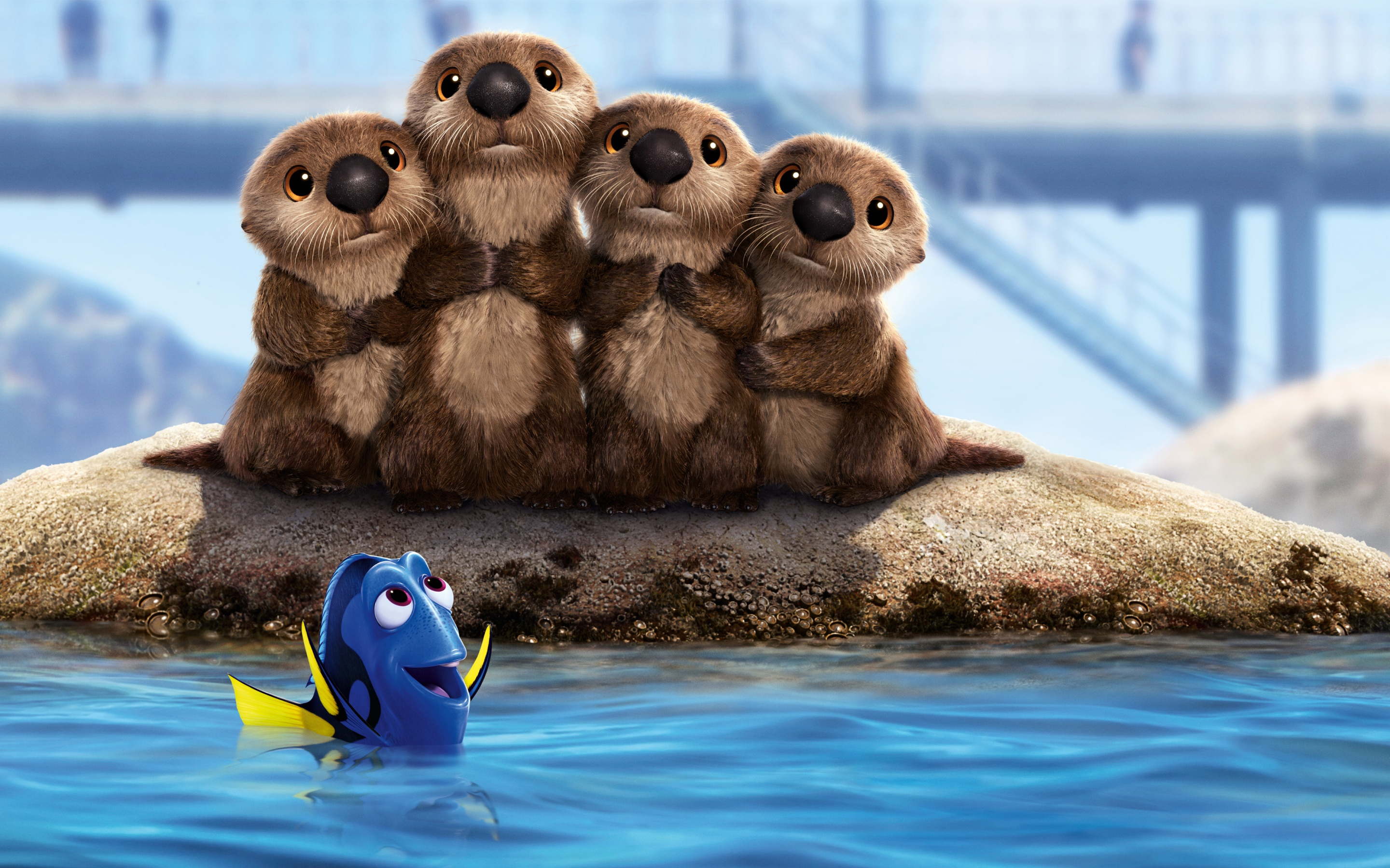 Sea Lions Finding Dory Wallpapers