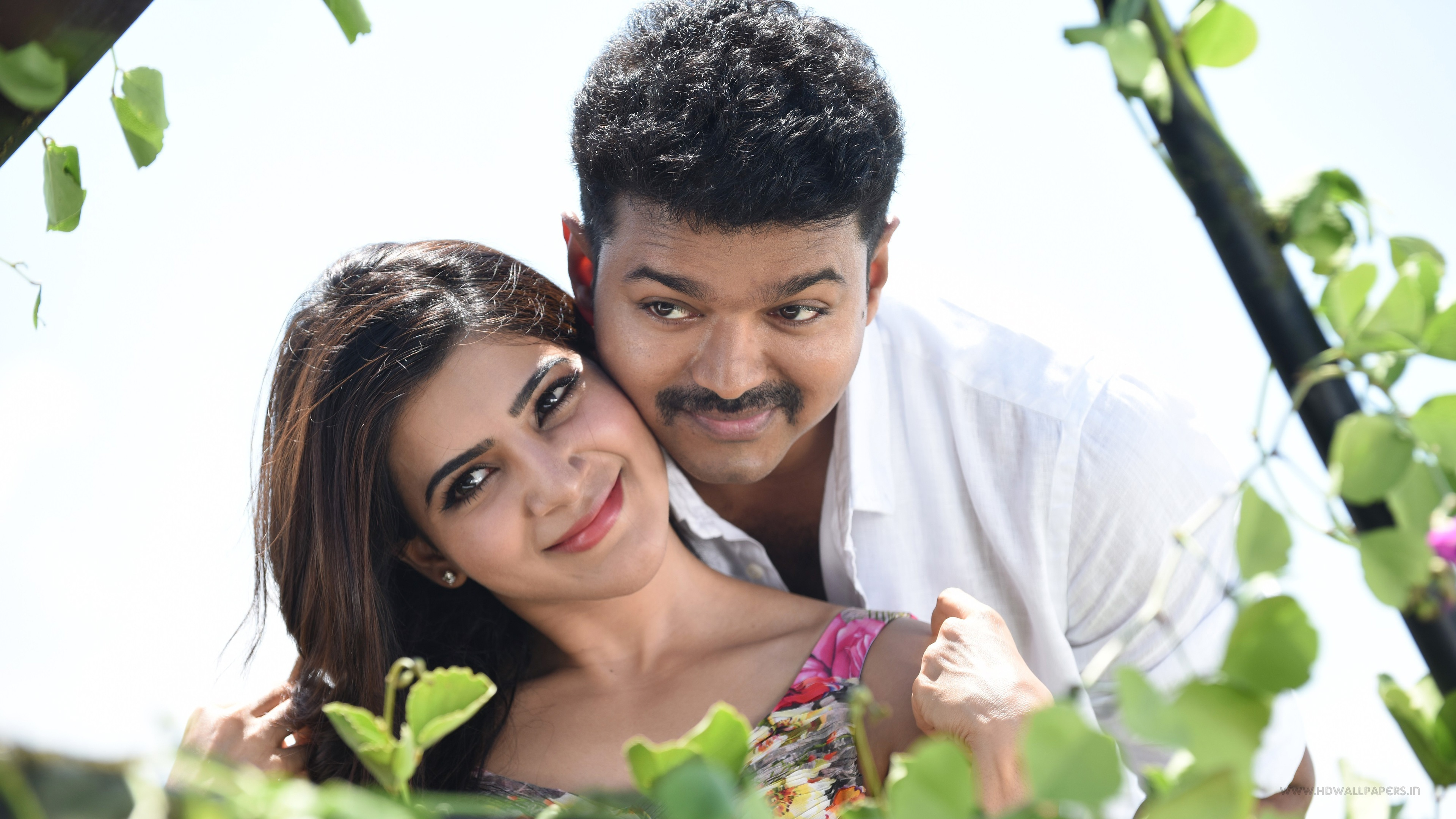 Samantha Vijay Theri Wallpapers In Jpg Format For Free Download