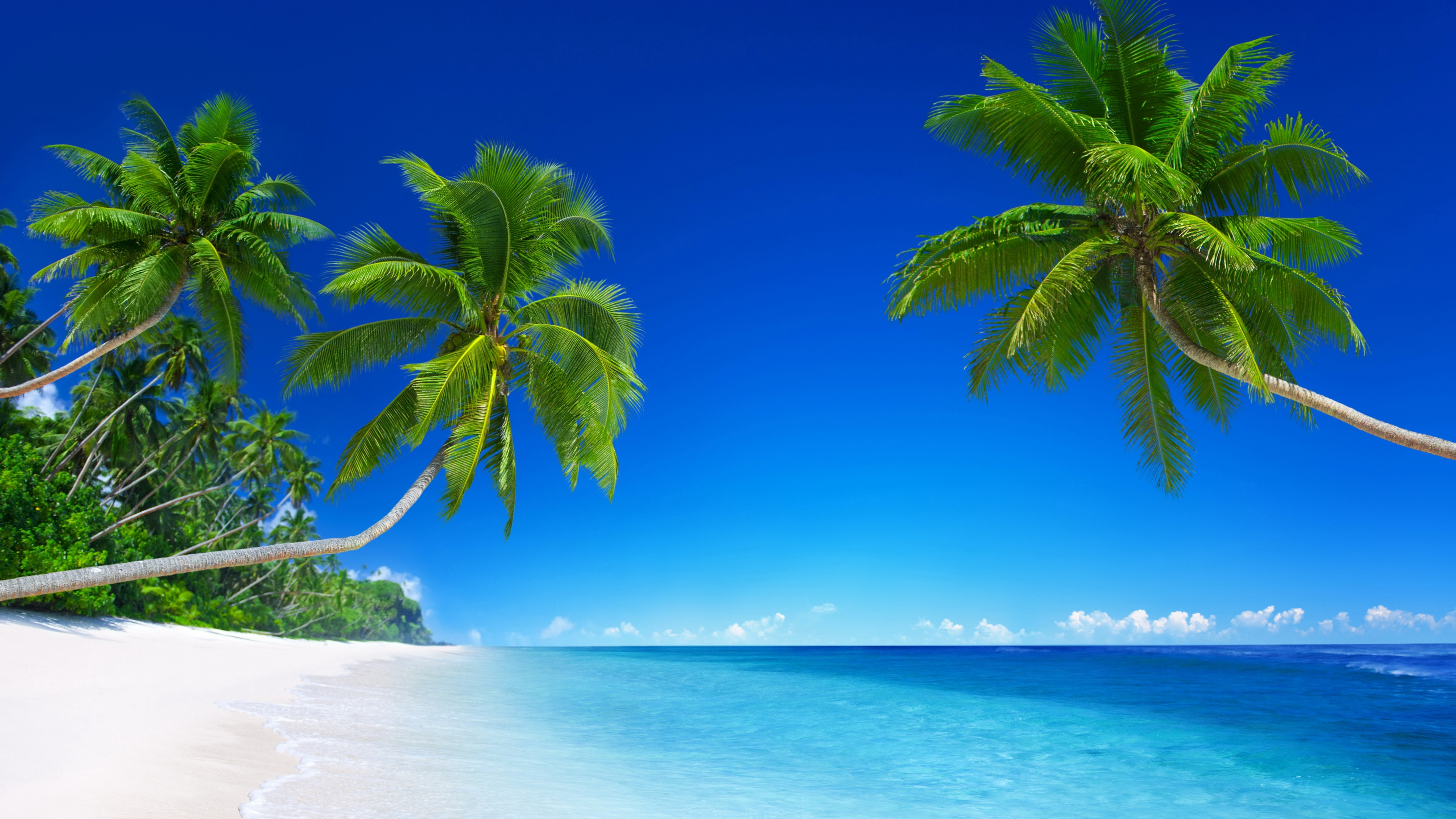 Tropical Beach Paradise 5k Wallpapers