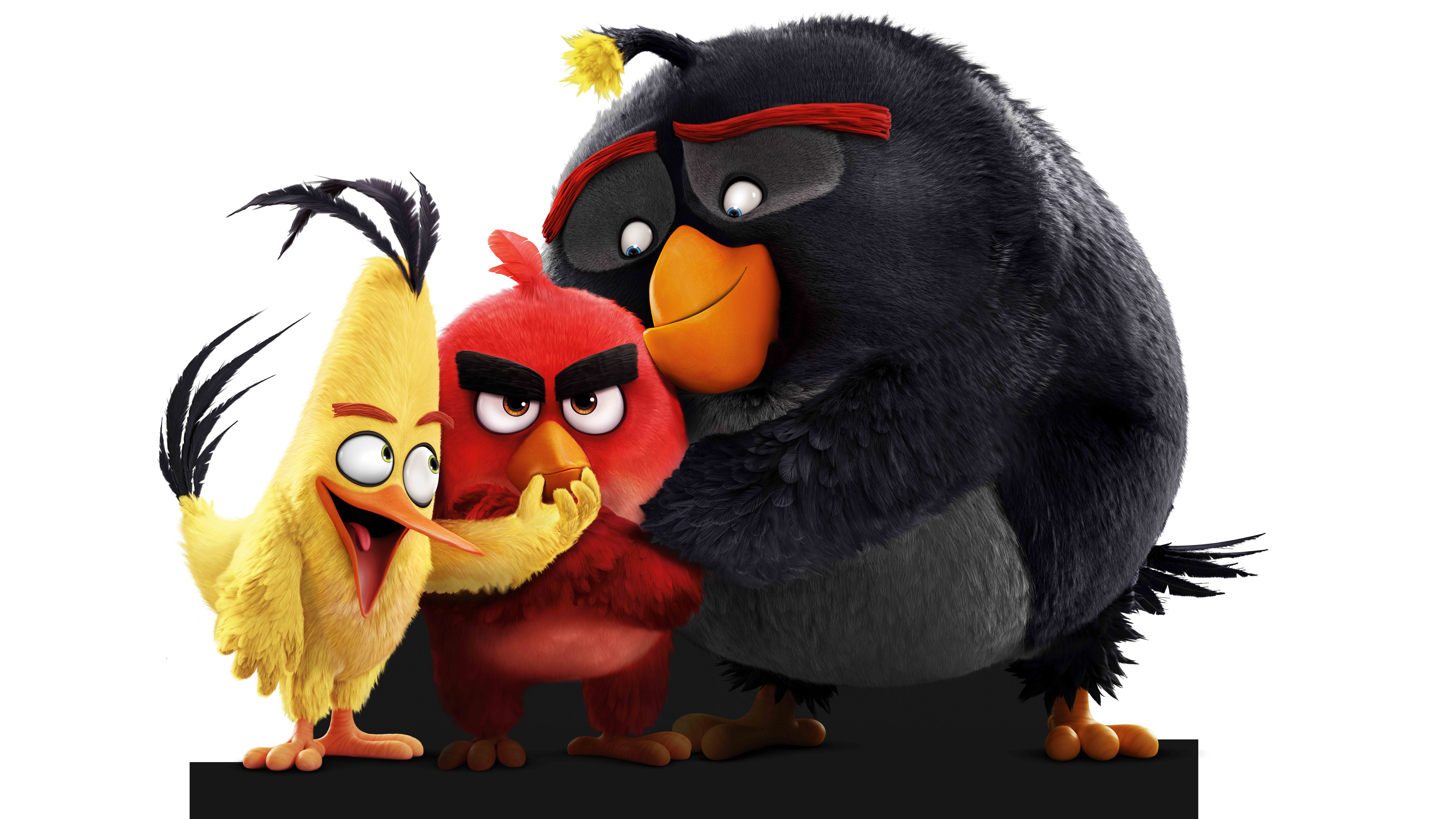 Angry birds animation movie wallpapers in jpg format for free download angry birds movie 2016 voltagebd Choice Image