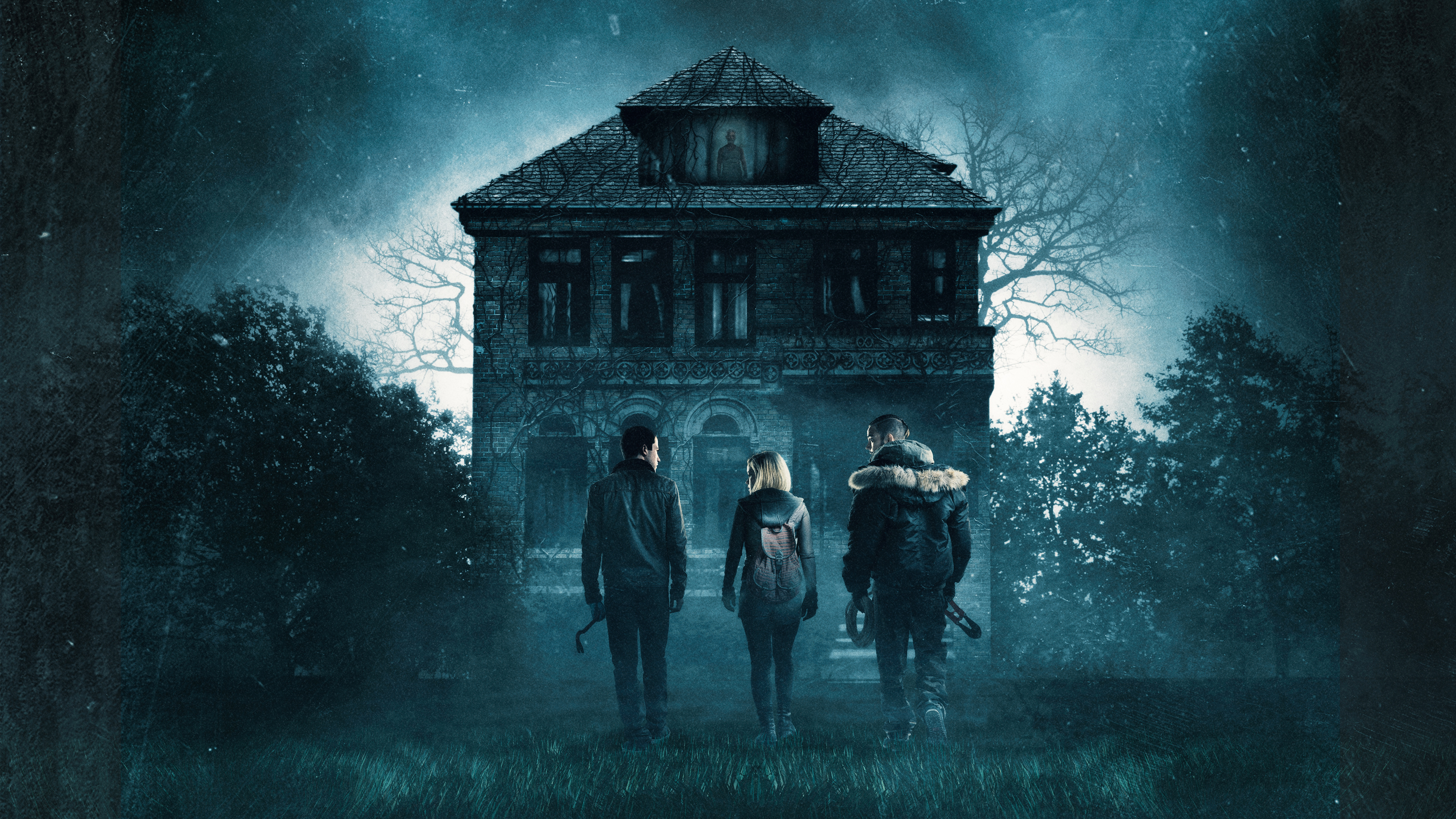 dont breathe 2016 horror movie wallpapers in jpg format for free