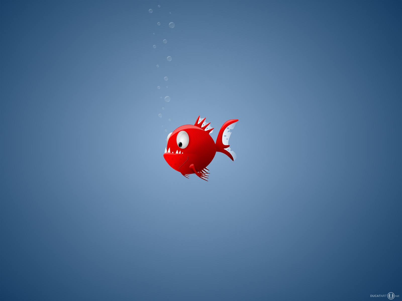 Piranha Wallpaper Miscellaneous Other Wallpapers In Jpg