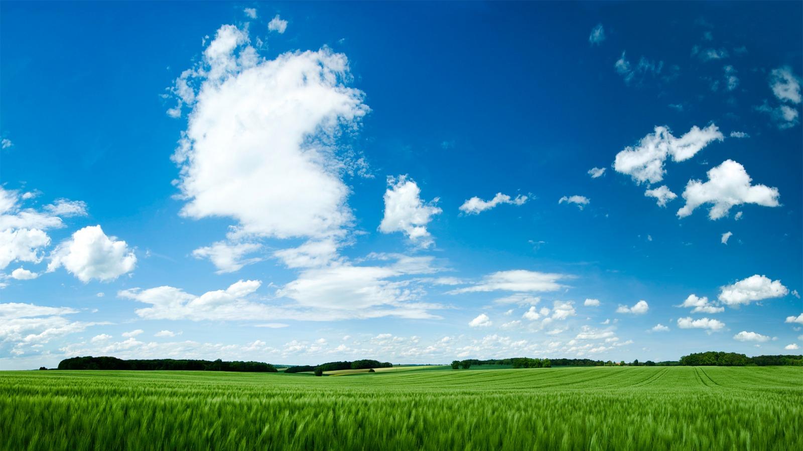 summer landscape image wallpaper - photo #7