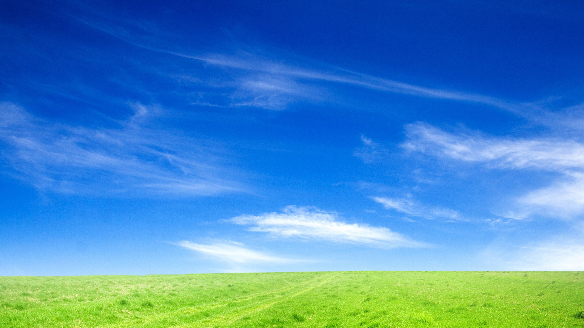 blue sky and green grass wallpapers in jpg format for free