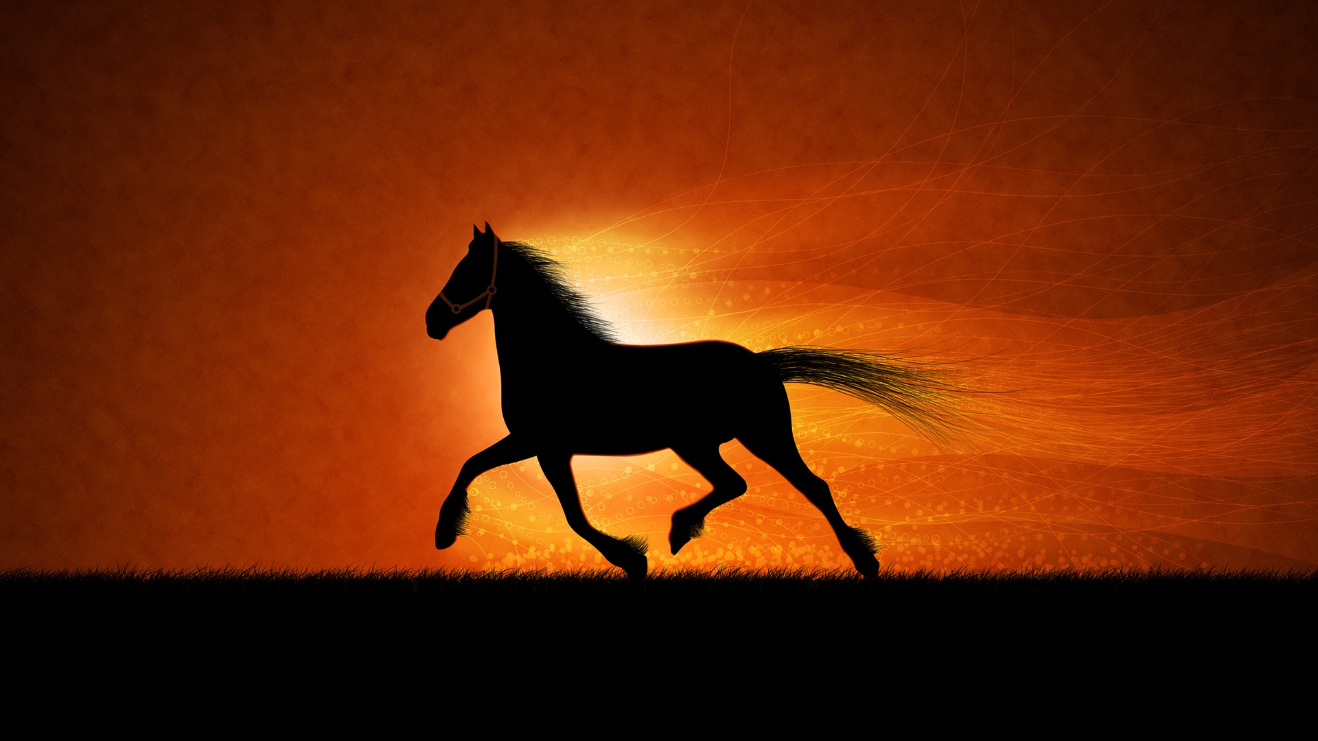 running horse wallpapers in jpg format for free download