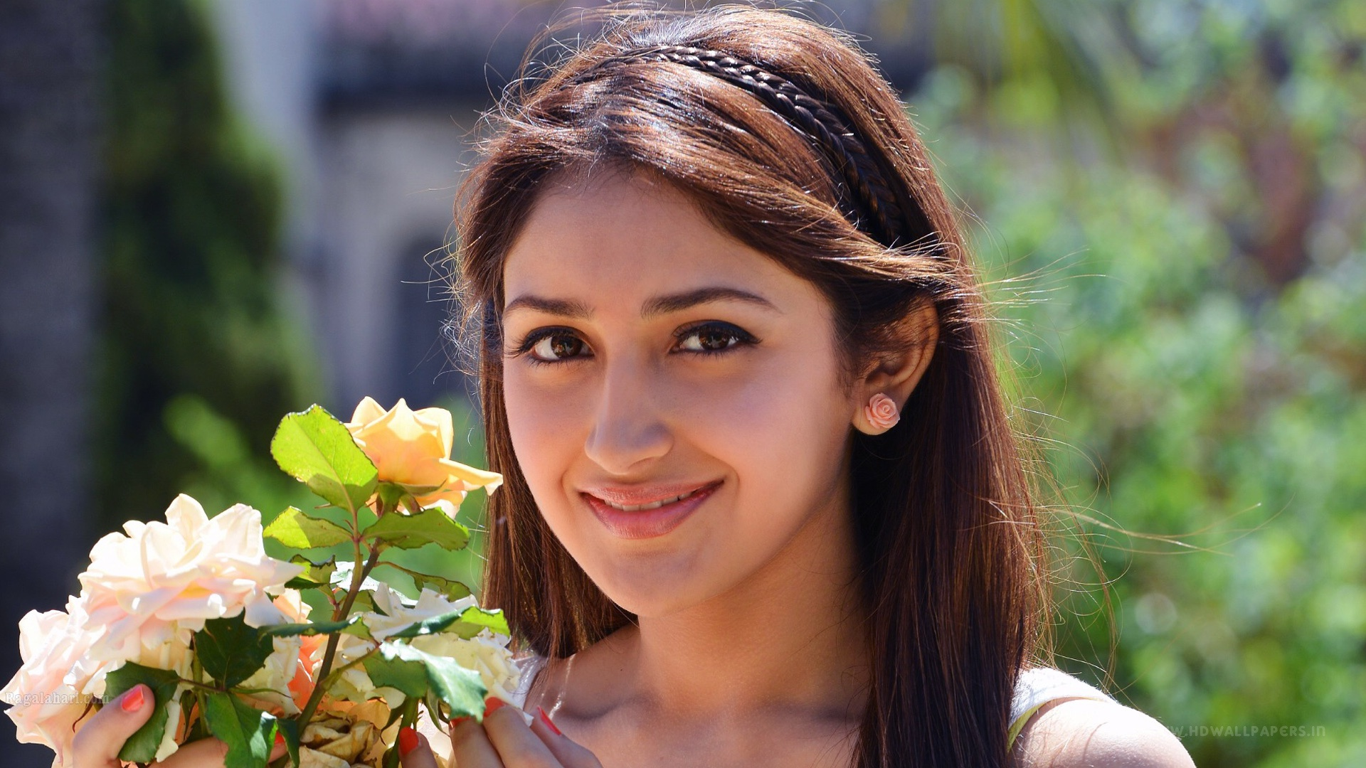 Telugu All Heroines Pictures Wallpapers: Sayesha Saigal Telugu Actress Wallpapers In Jpg Format For