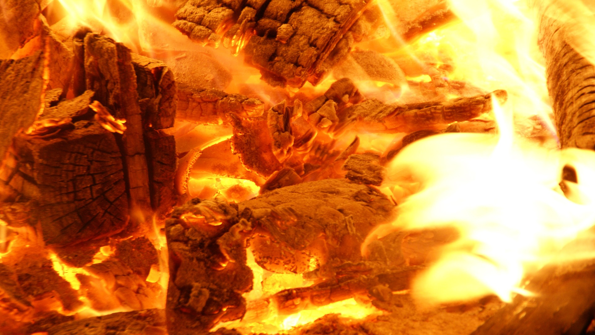 Wood Fire Wallpaper Other Nature Wallpapers In Jpg Format