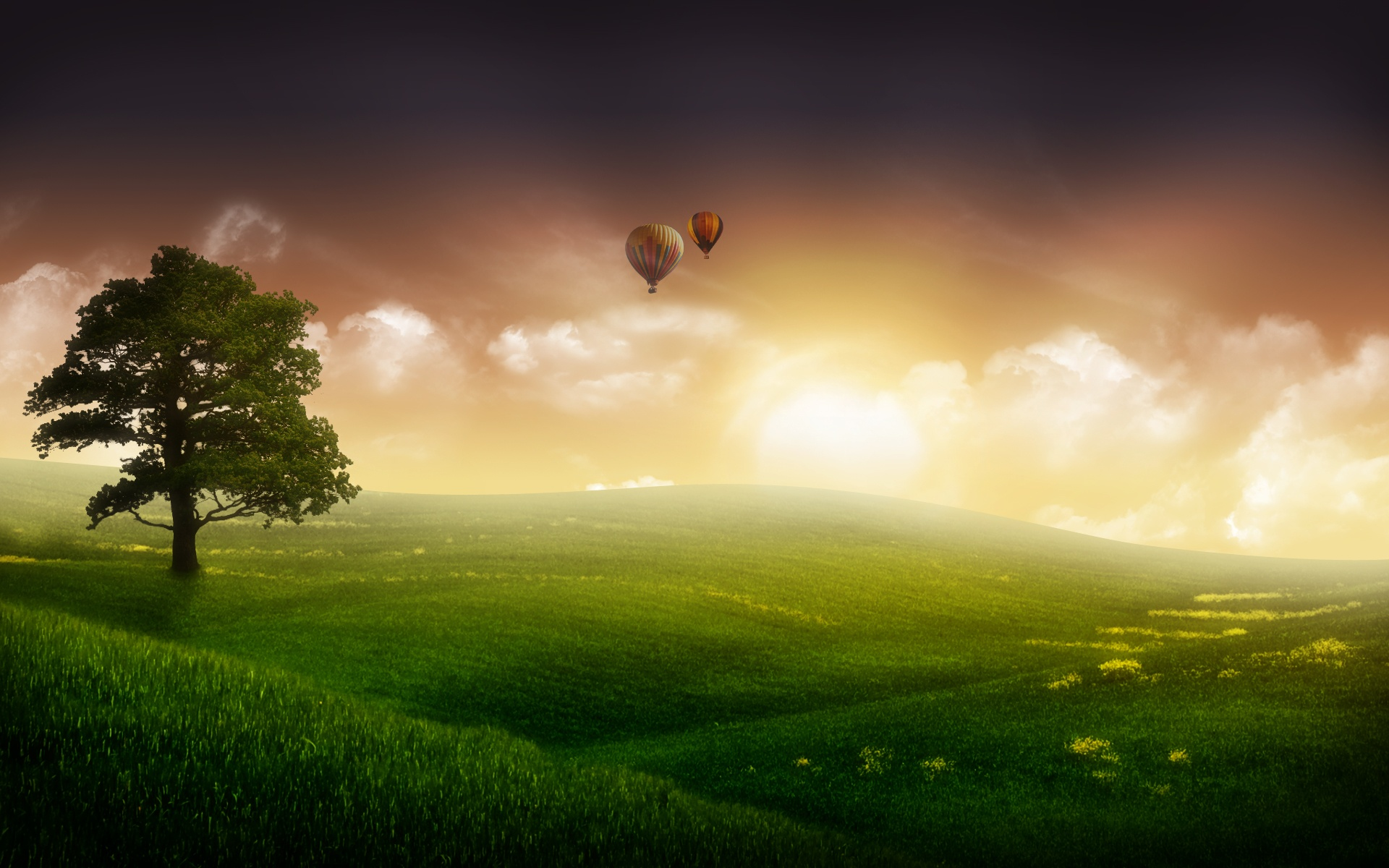 Nature Balloon Ride Wallpapers In Jpg Format For Free Download