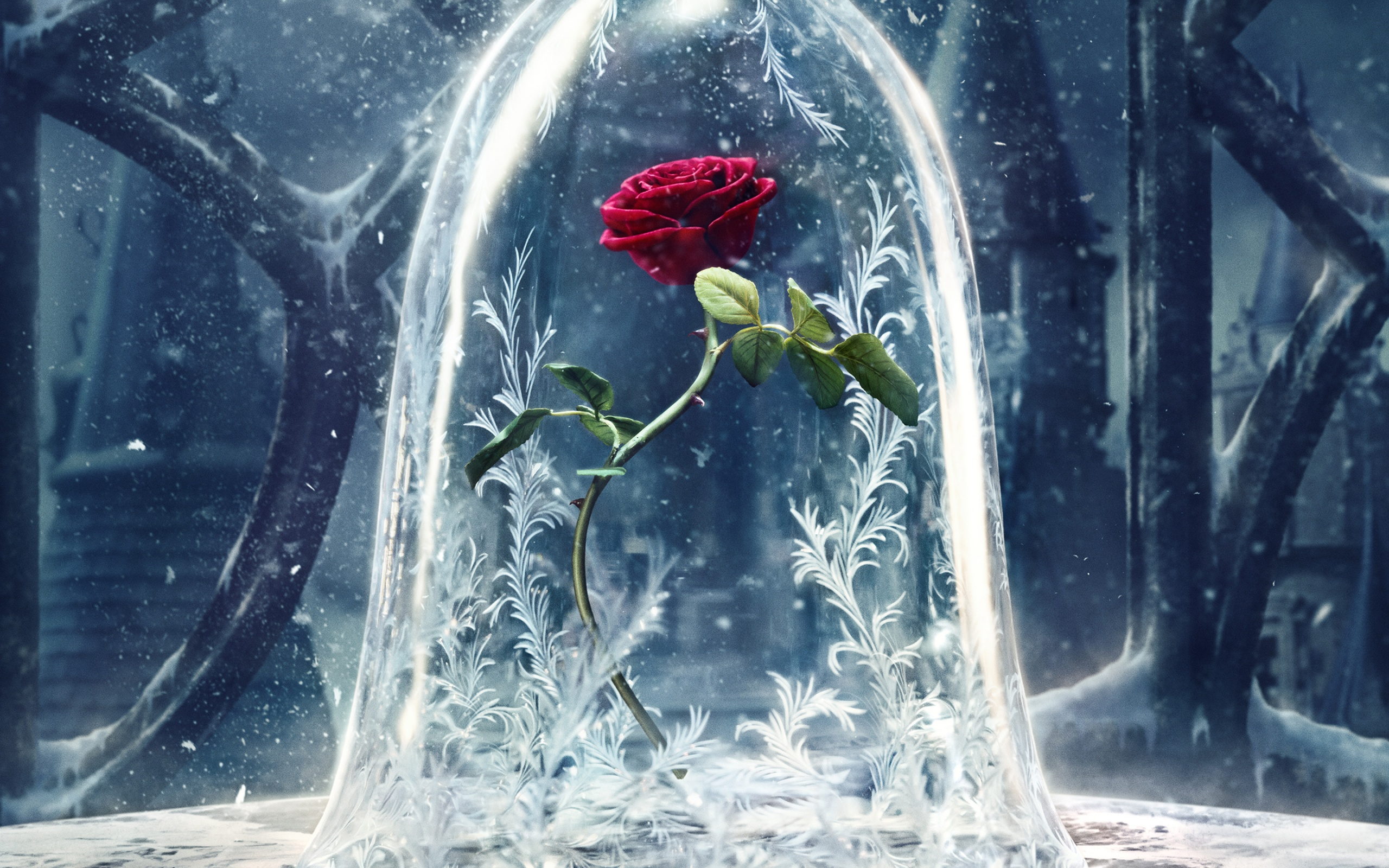 Download Beauty And Beast: Beauty And The Beast 2017 Wallpapers In Jpg Format For