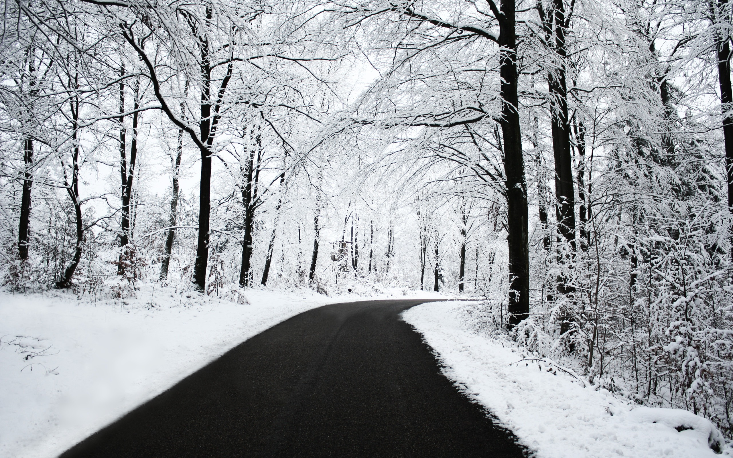 awesome nature wallpapers winter - photo #40